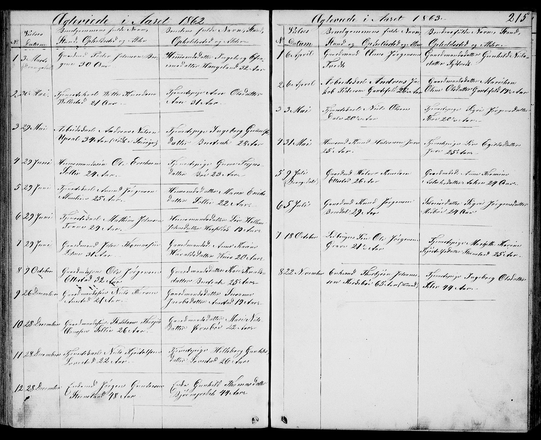 SAKO, Drangedal kirkebøker, G/Gb/L0001: Klokkerbok nr. II 1, 1856-1894, s. 215