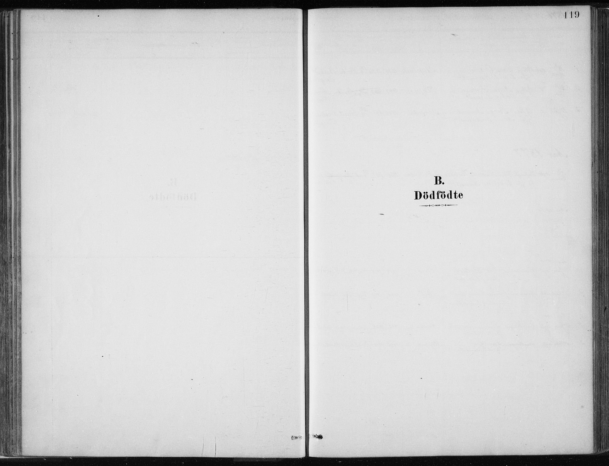 SAB, Masfjorden Soknepresembete, Ministerialbok nr. B  1, 1876-1899, s. 119