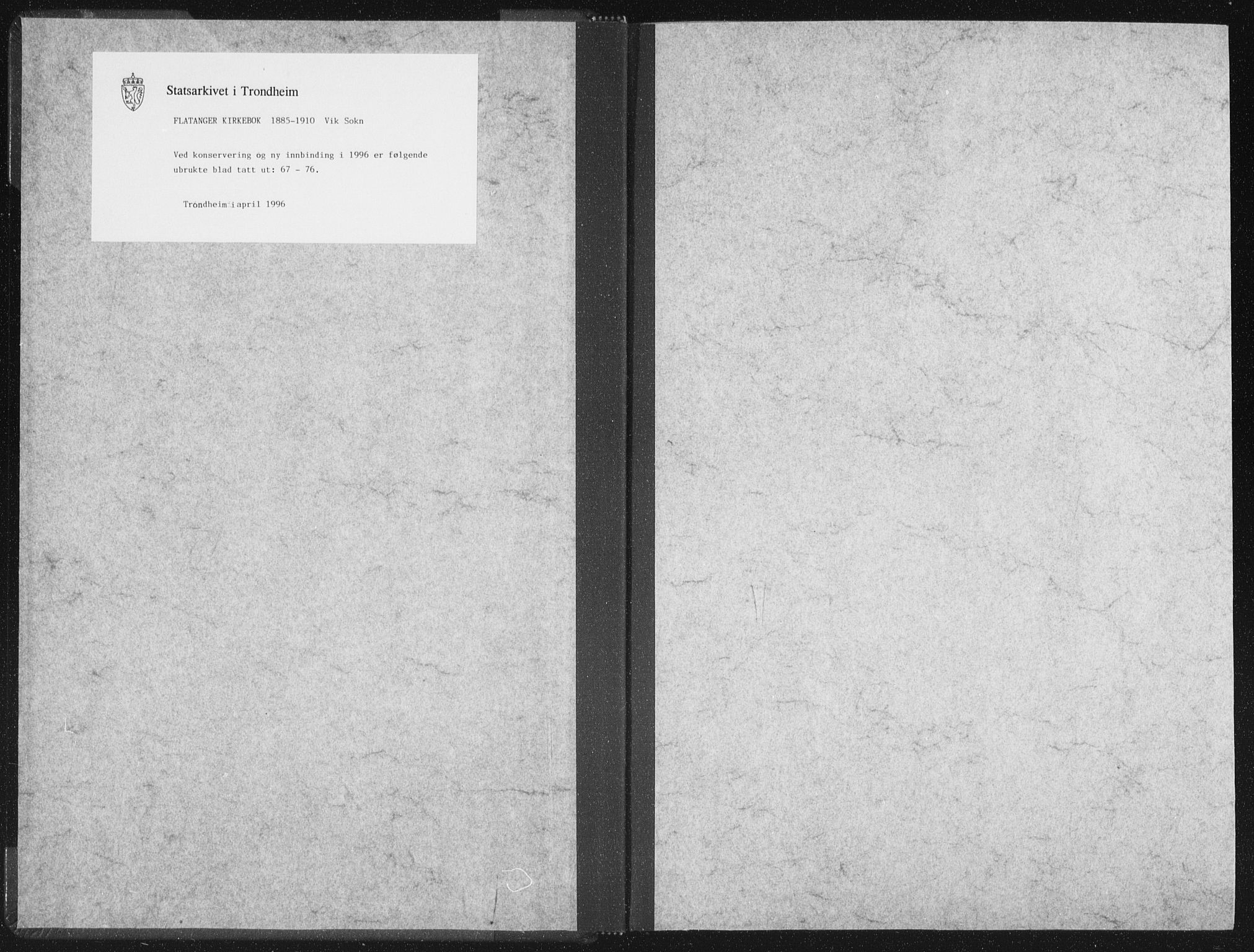 SAT, Ministerialprotokoller, klokkerbøker og fødselsregistre - Nord-Trøndelag, 771/L0597: Ministerialbok nr. 771A04, 1885-1910