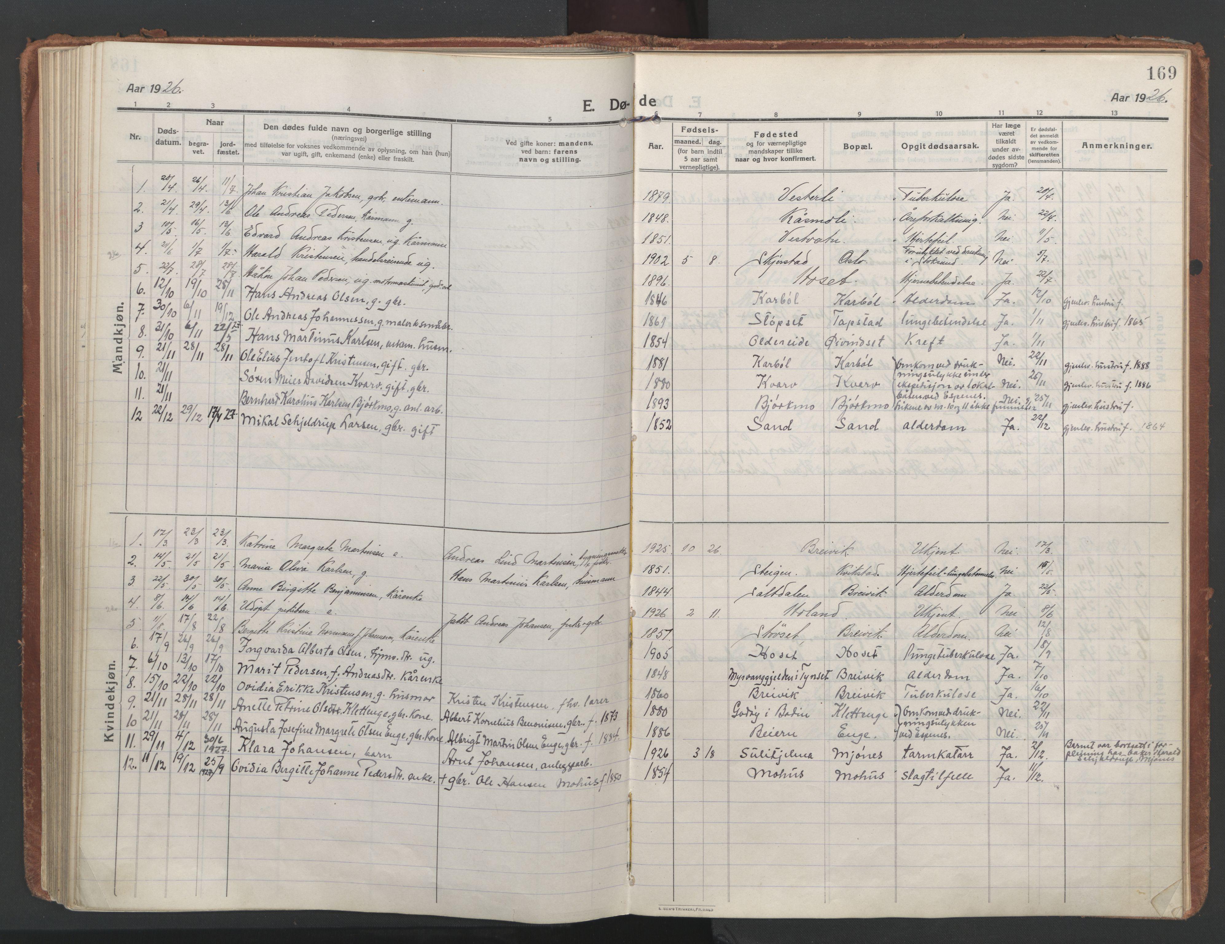 SAT, Ministerialprotokoller, klokkerbøker og fødselsregistre - Nordland, 852/L0748: Ministerialbok nr. 852A18, 1913-1932, s. 169