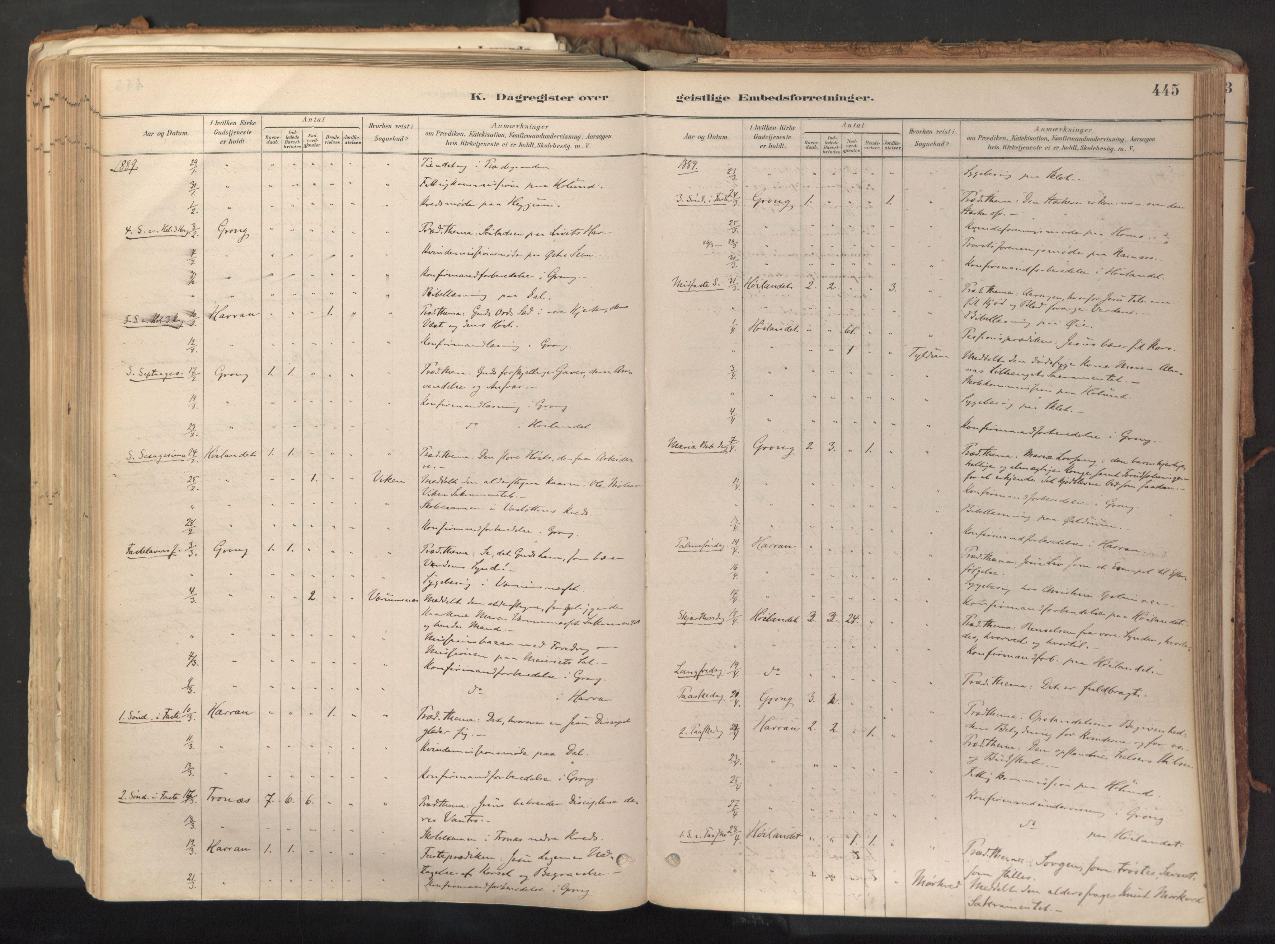 SAT, Ministerialprotokoller, klokkerbøker og fødselsregistre - Nord-Trøndelag, 758/L0519: Ministerialbok nr. 758A04, 1880-1926, s. 445