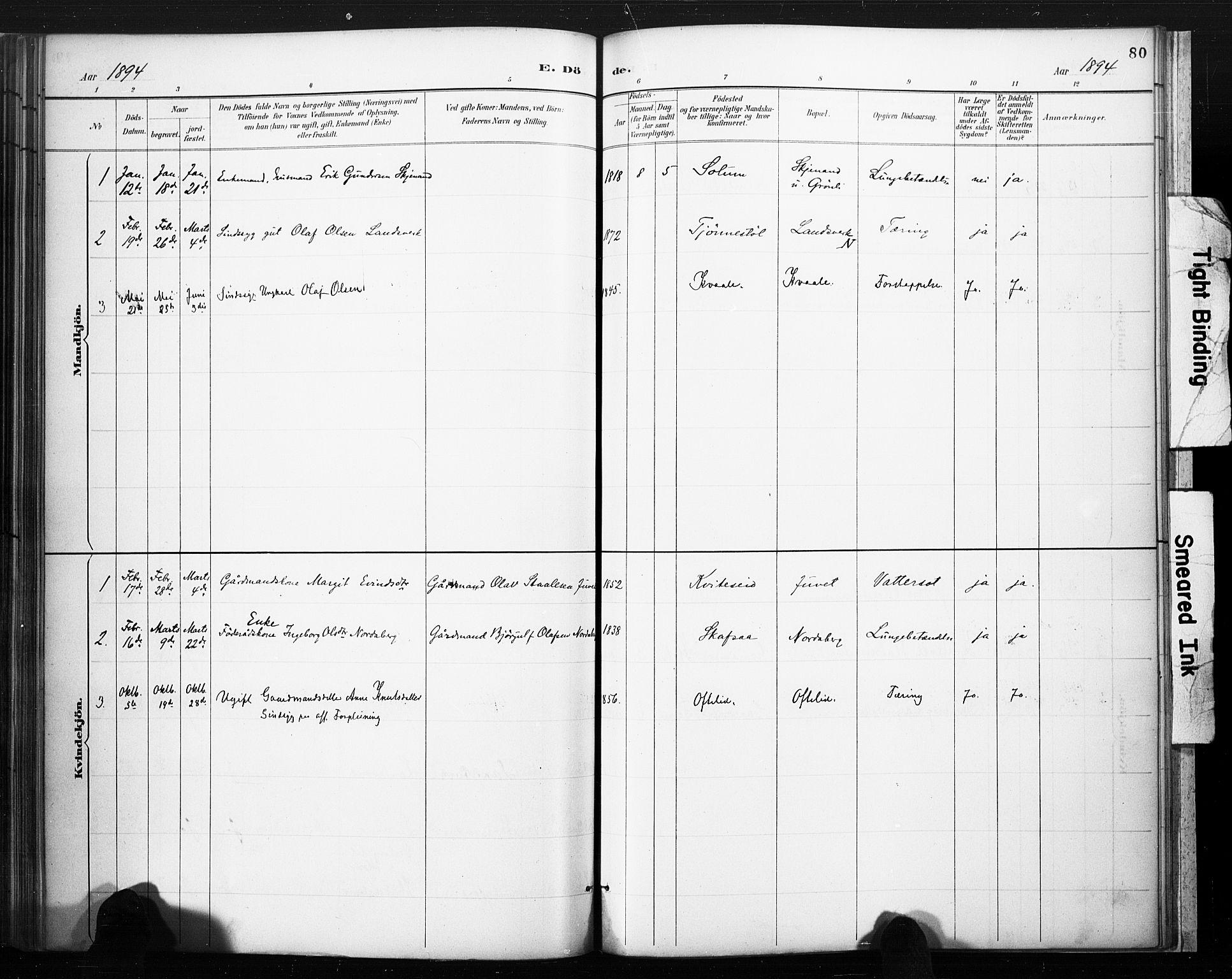 SAKO, Lårdal kirkebøker, F/Fc/L0002: Ministerialbok nr. III 2, 1887-1906, s. 80
