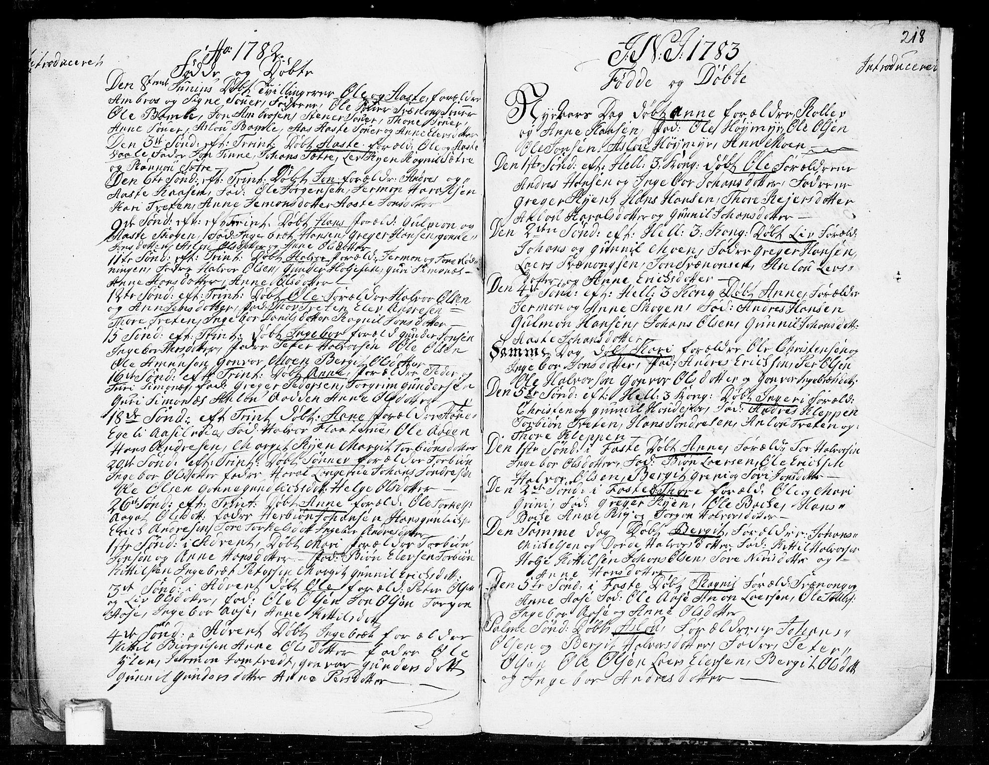 SAKO, Heddal kirkebøker, F/Fa/L0003: Ministerialbok nr. I 3, 1723-1783, s. 218