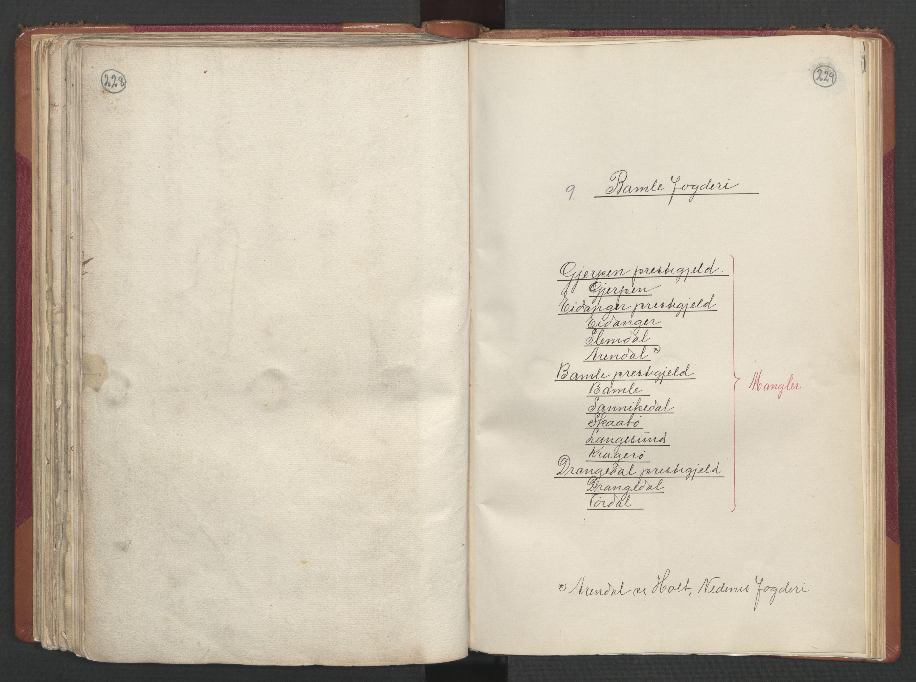 RA, Manntallet 1701, nr. 2: Solør, Odal og Østerdal fogderi og Larvik grevskap, 1701, s. 228-229