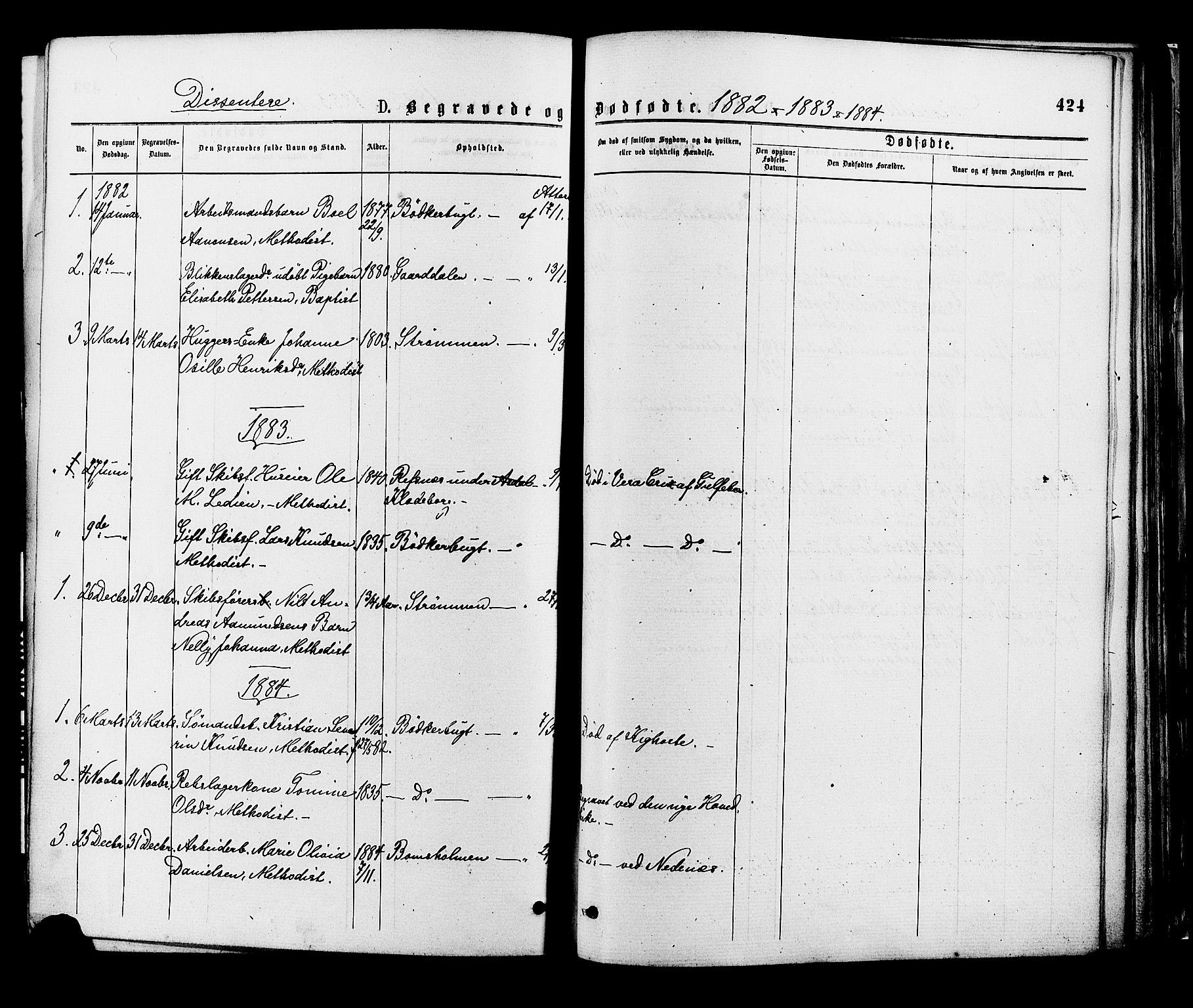 SAK, Øyestad sokneprestkontor, F/Fa/L0016: Ministerialbok nr. A 16, 1874-1886, s. 423