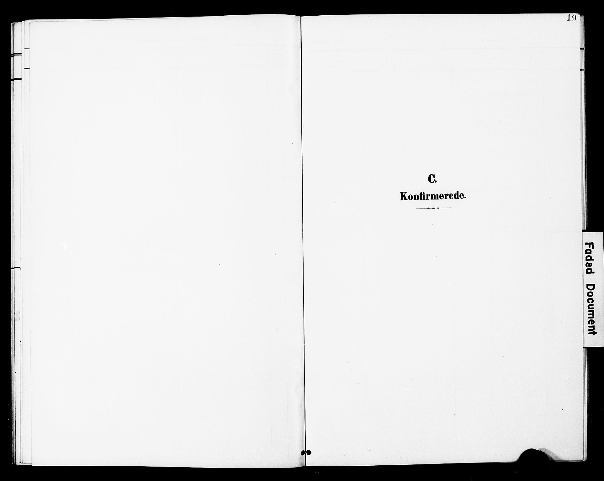 SAT, Ministerialprotokoller, klokkerbøker og fødselsregistre - Nord-Trøndelag, 748/L0464: Ministerialbok nr. 748A01, 1900-1908, s. 19