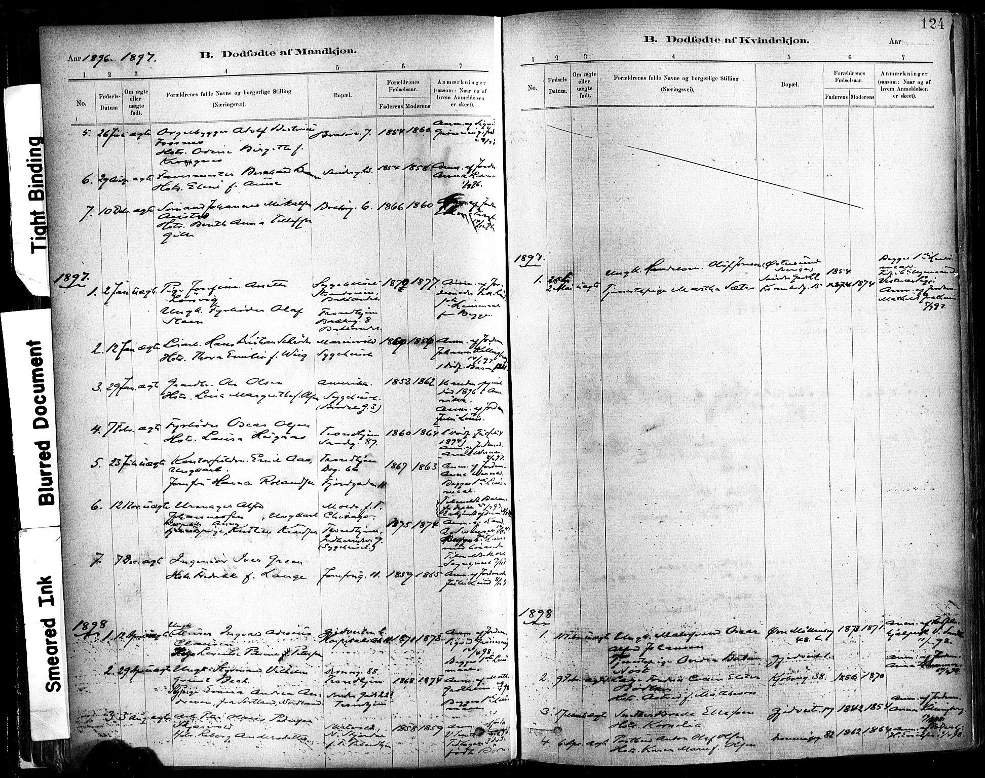SAT, Ministerialprotokoller, klokkerbøker og fødselsregistre - Sør-Trøndelag, 602/L0119: Ministerialbok nr. 602A17, 1880-1901, s. 124