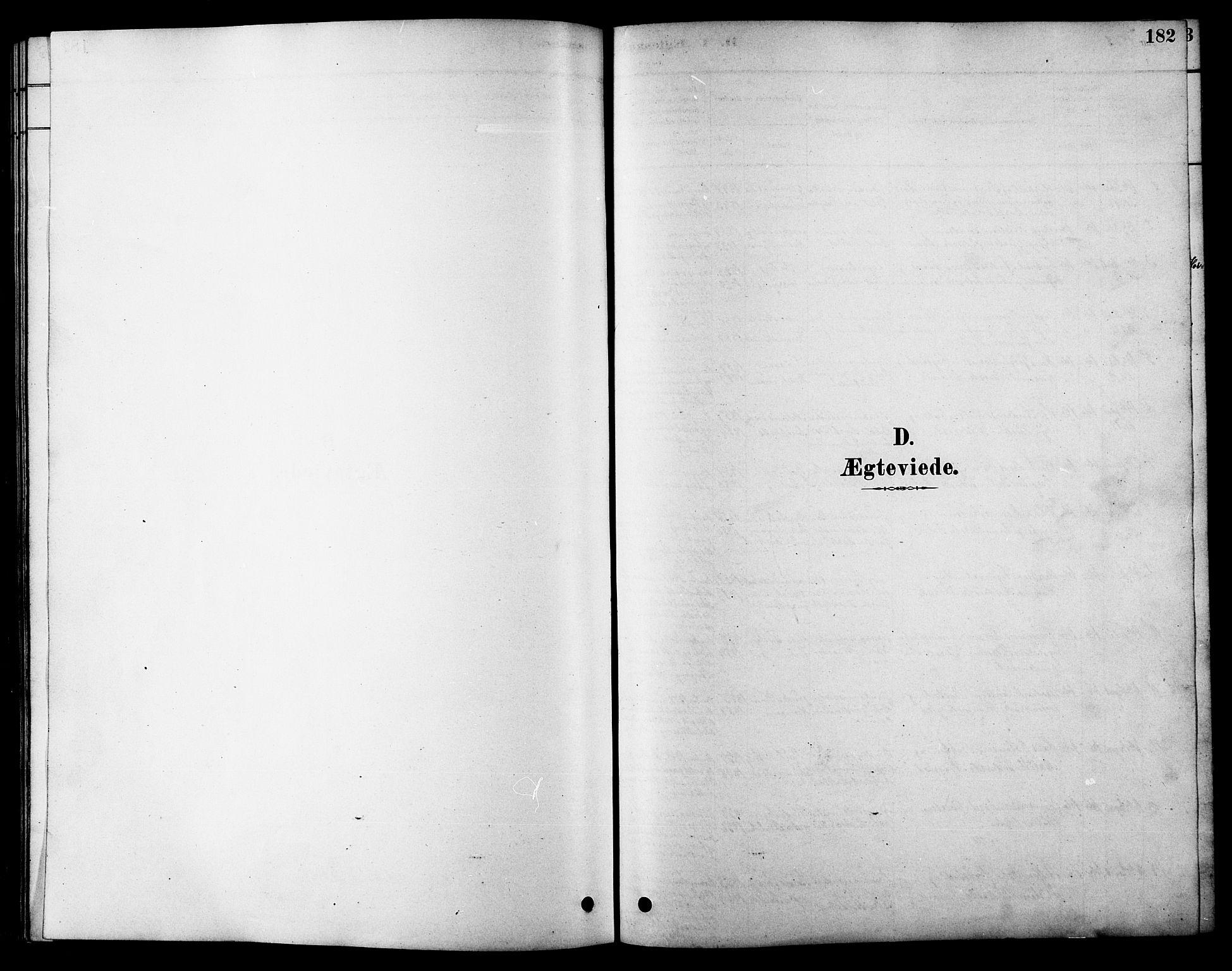 SAT, Ministerialprotokoller, klokkerbøker og fødselsregistre - Sør-Trøndelag, 616/L0423: Klokkerbok nr. 616C06, 1878-1903, s. 182