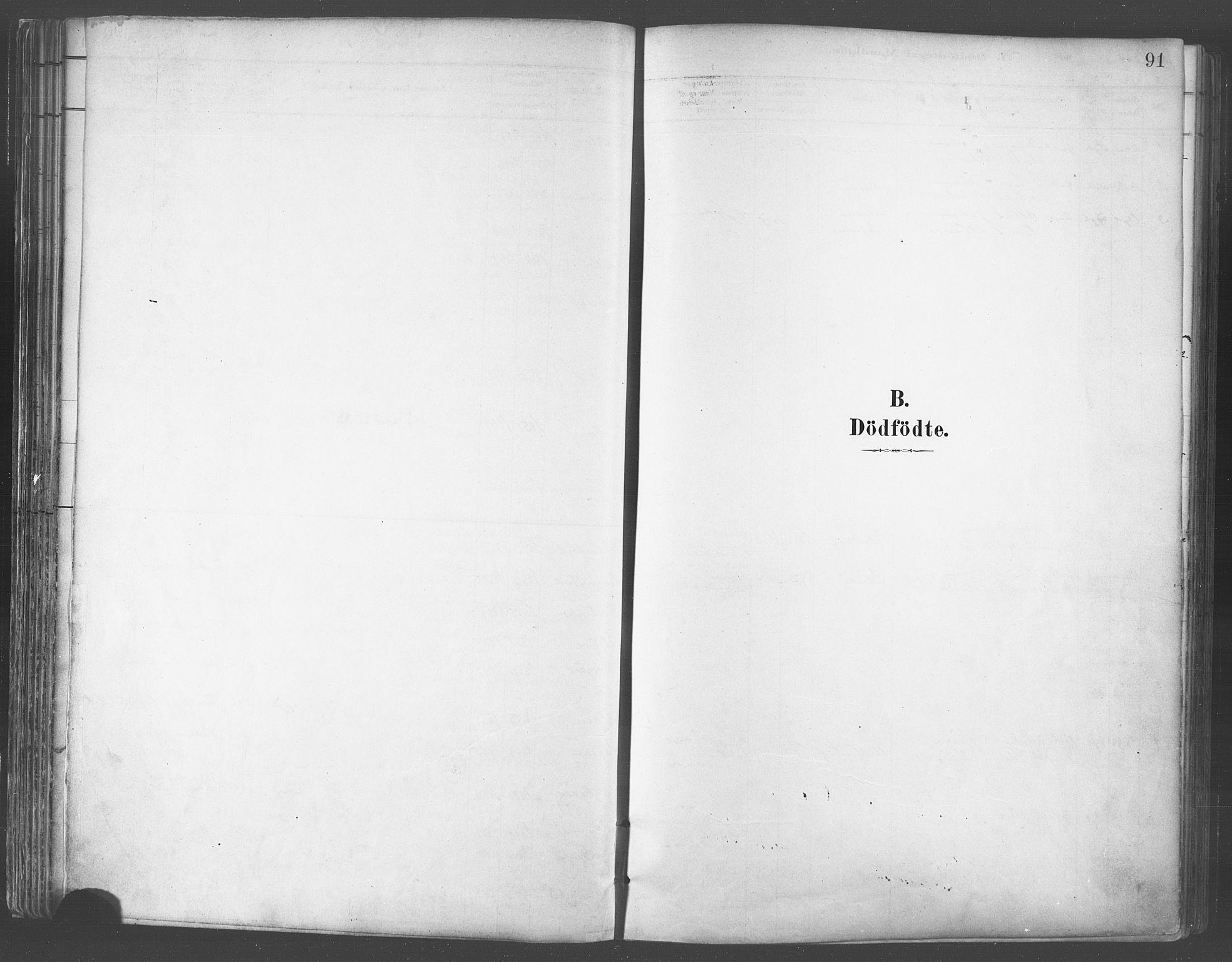 SATØ, Balsfjord sokneprestembete, Ministerialbok nr. 5, 1884-1897, s. 91