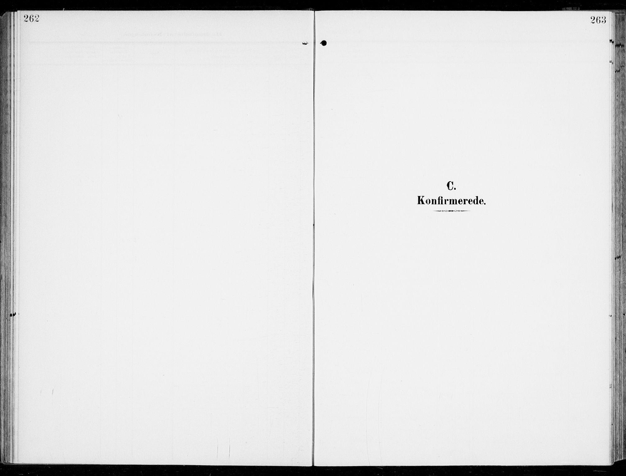 SAKO, Sem kirkebøker, F/Fb/L0006: Ministerialbok nr. II 6, 1905-1918, s. 262-263