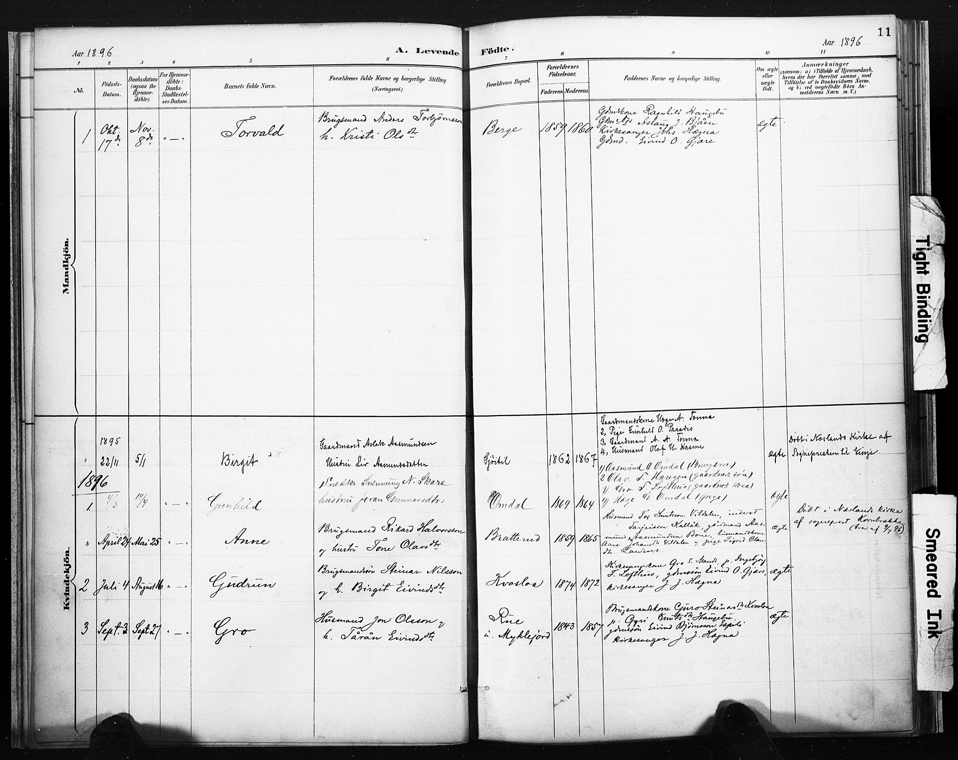 SAKO, Lårdal kirkebøker, F/Fb/L0002: Ministerialbok nr. II 2, 1887-1918, s. 11