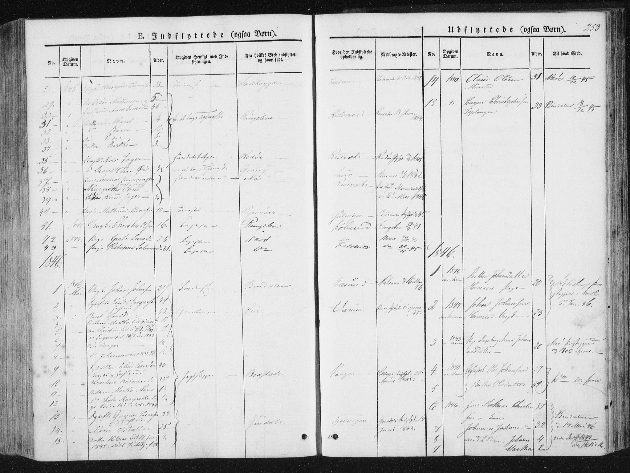 SAT, Ministerialprotokoller, klokkerbøker og fødselsregistre - Nord-Trøndelag, 780/L0640: Ministerialbok nr. 780A05, 1845-1856, s. 253
