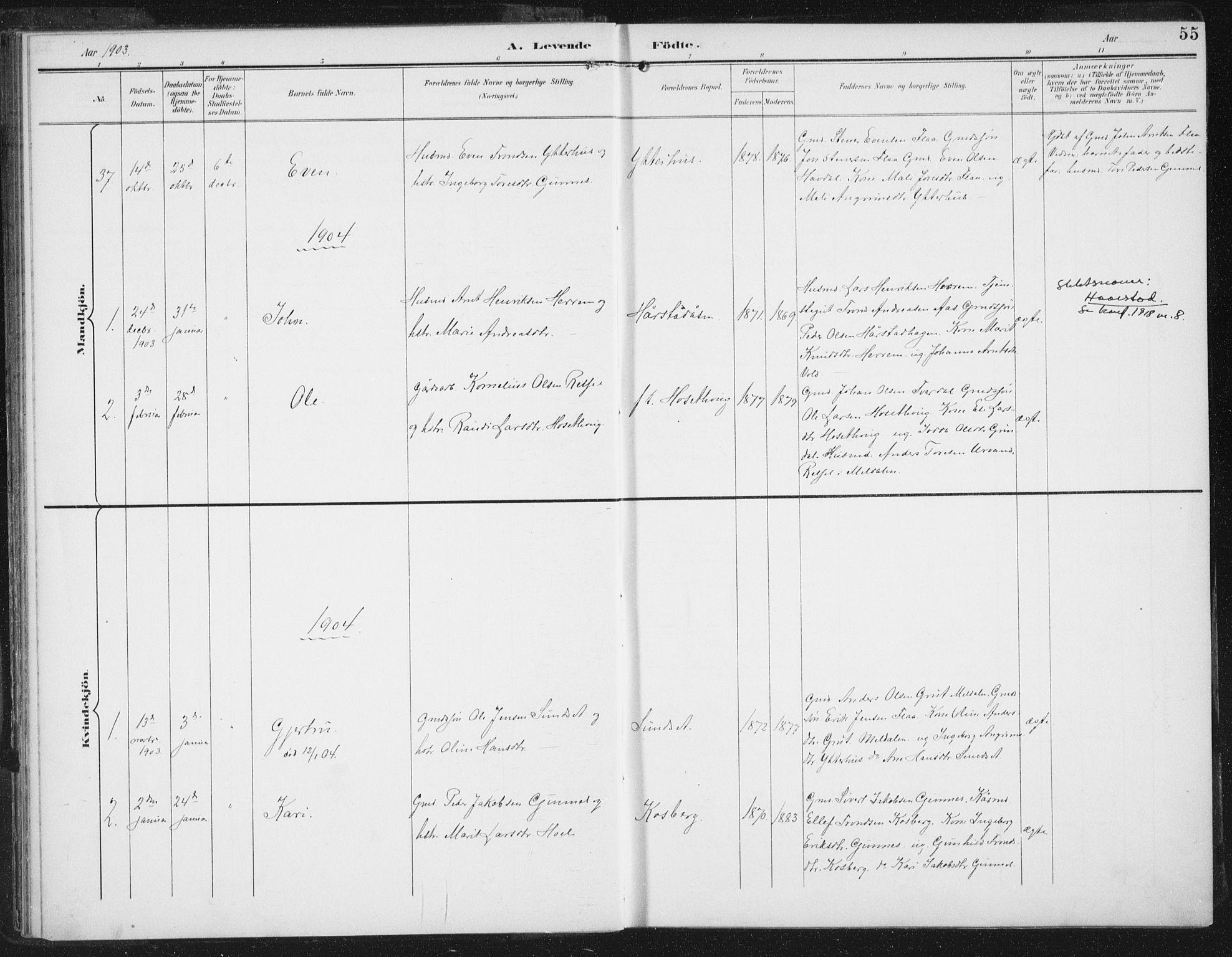SAT, Ministerialprotokoller, klokkerbøker og fødselsregistre - Sør-Trøndelag, 674/L0872: Ministerialbok nr. 674A04, 1897-1907, s. 55