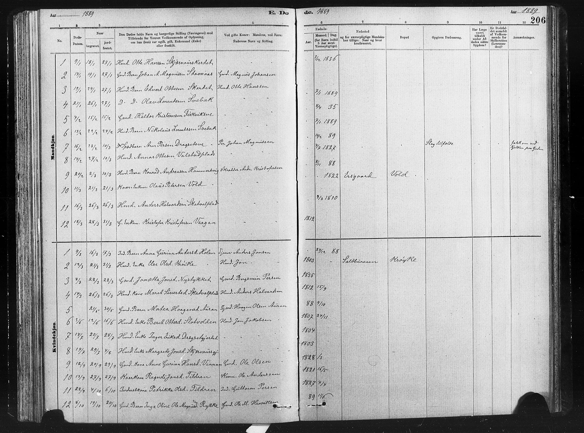 SAT, Ministerialprotokoller, klokkerbøker og fødselsregistre - Nord-Trøndelag, 712/L0103: Klokkerbok nr. 712C01, 1878-1917, s. 206