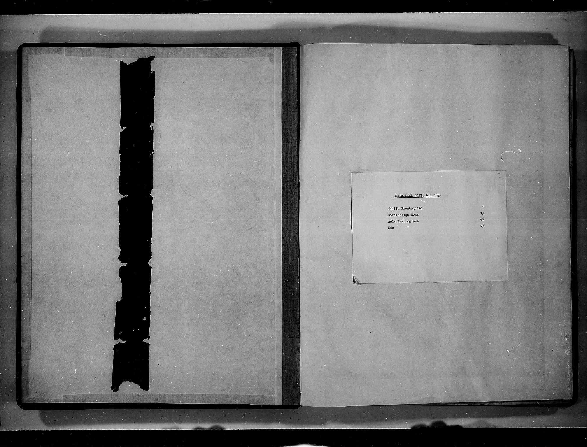 RA, Rentekammeret inntil 1814, Realistisk ordnet avdeling, N/Nb/Nbf/L0109: Ringerike og Hallingdal eksaminasjonsprotokoll, 1723, s. upaginert