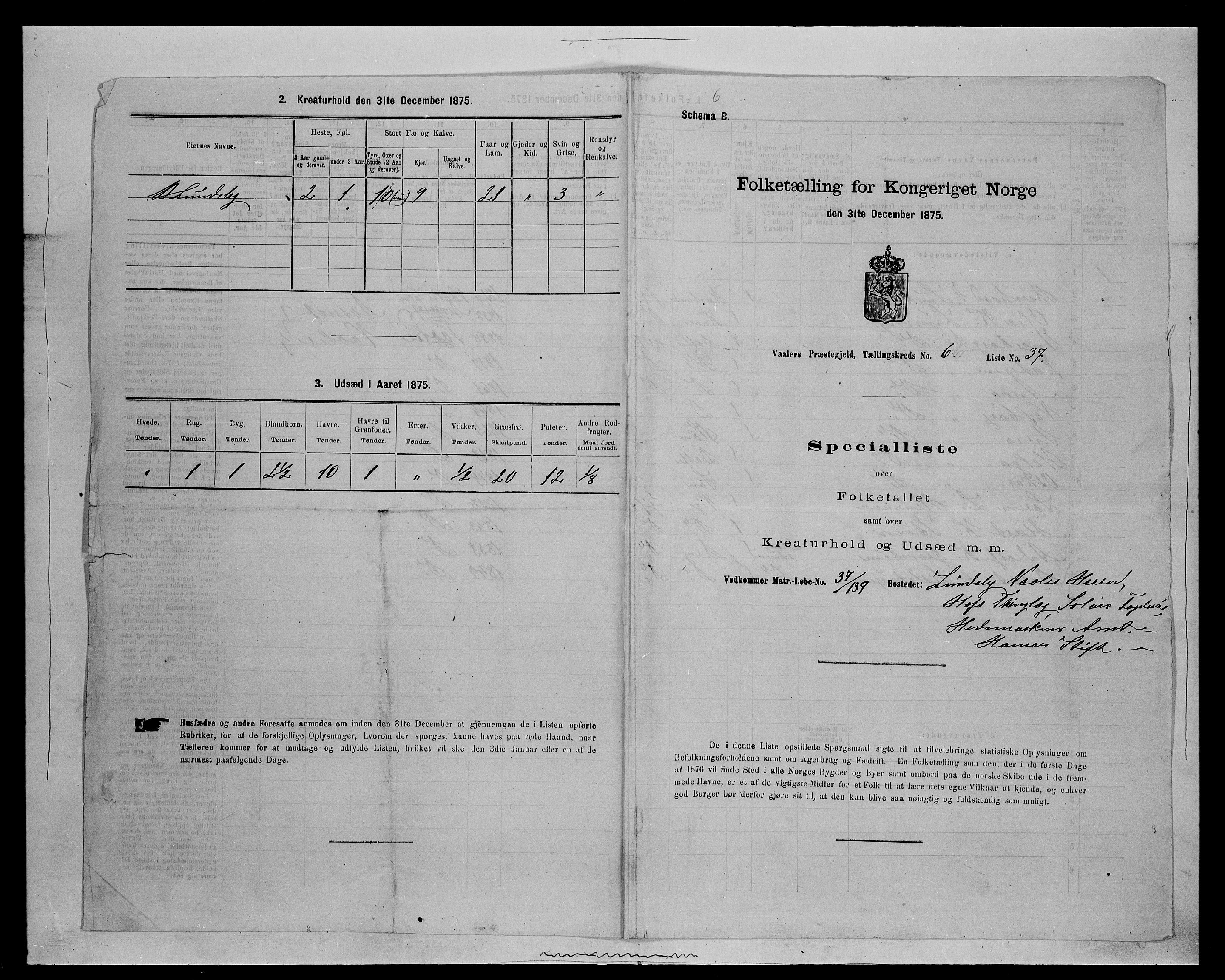 SAH, Folketelling 1875 for 0426P Våler prestegjeld, 1875, s. 787