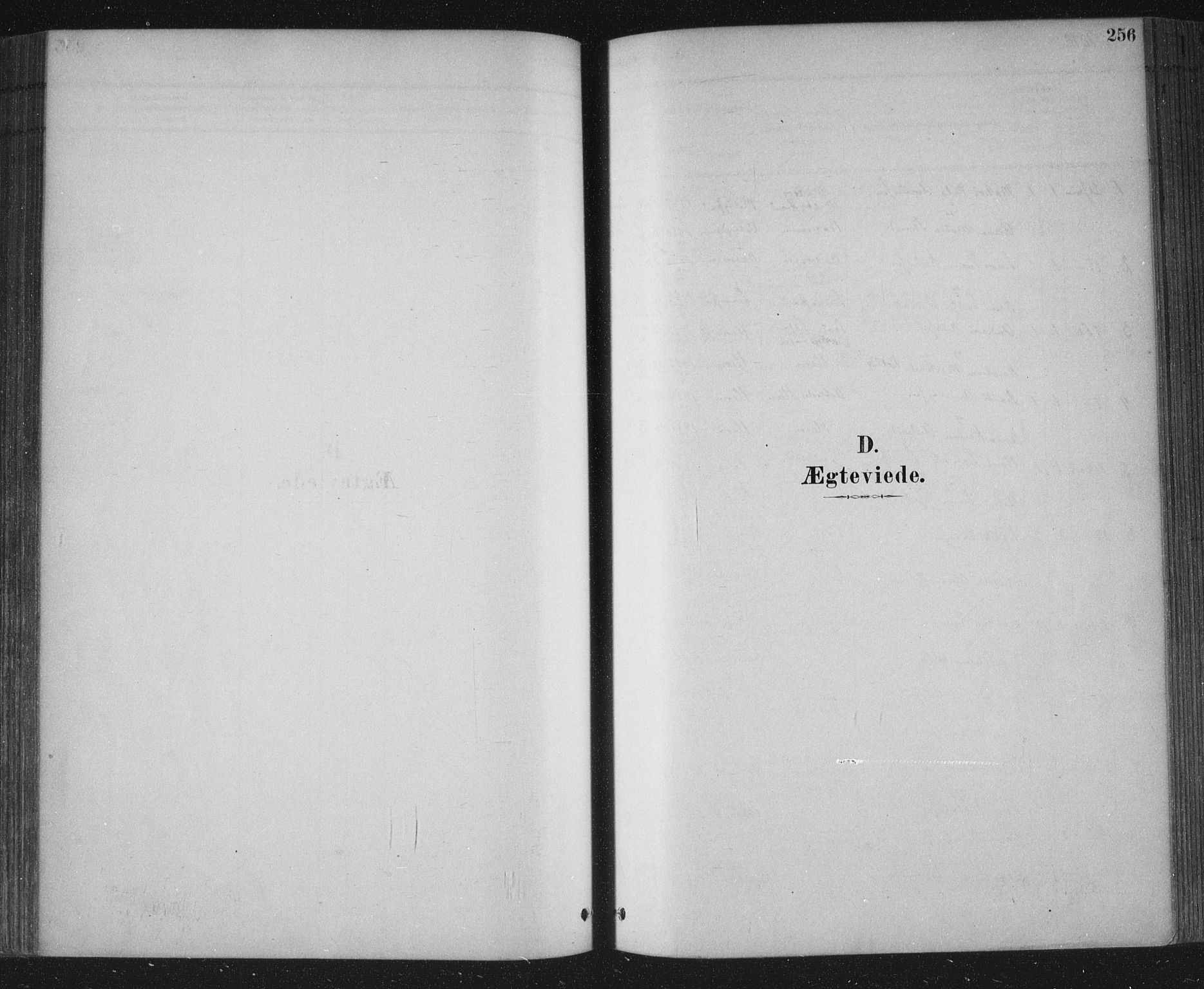 SAKO, Bamble kirkebøker, F/Fa/L0007: Ministerialbok nr. I 7, 1878-1888, s. 256