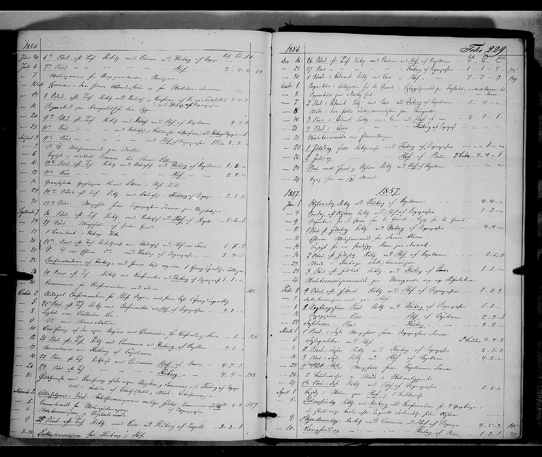 SAH, Land prestekontor, Ministerialbok nr. 9, 1847-1859, s. 229
