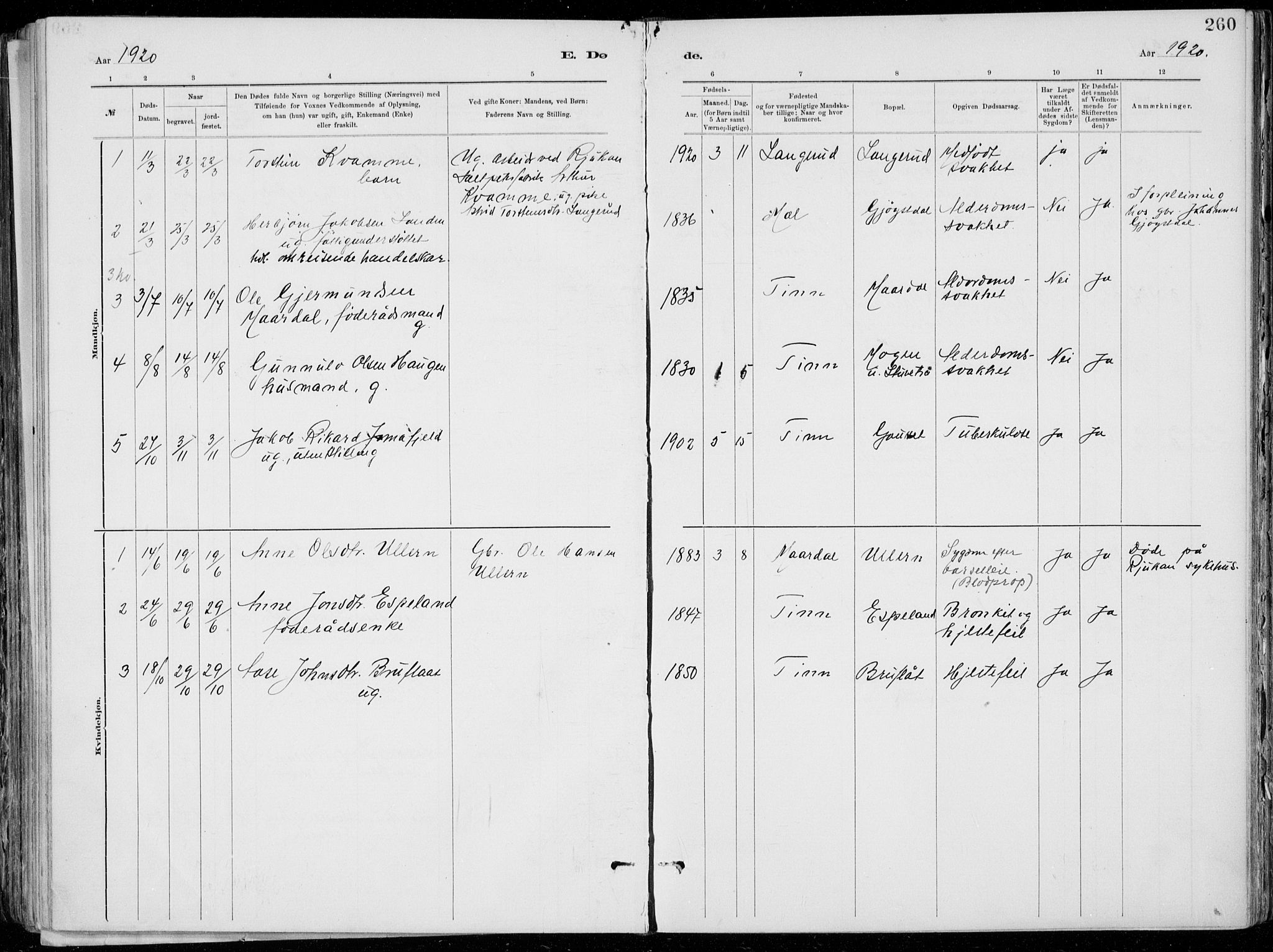 SAKO, Tinn kirkebøker, F/Fa/L0007: Ministerialbok nr. I 7, 1878-1922, s. 260