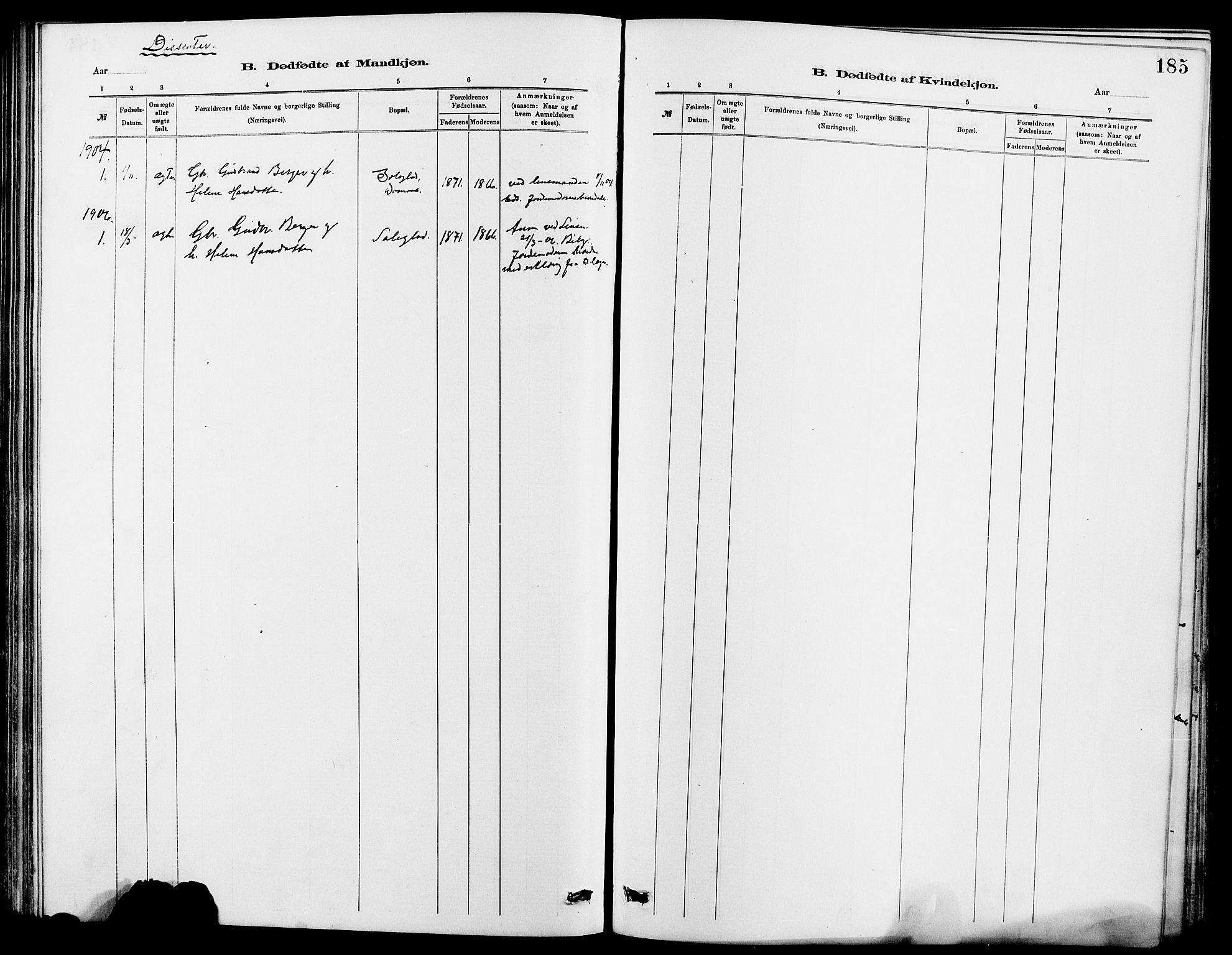 SAH, Dovre prestekontor, Klokkerbok nr. 2, 1881-1907, s. 185
