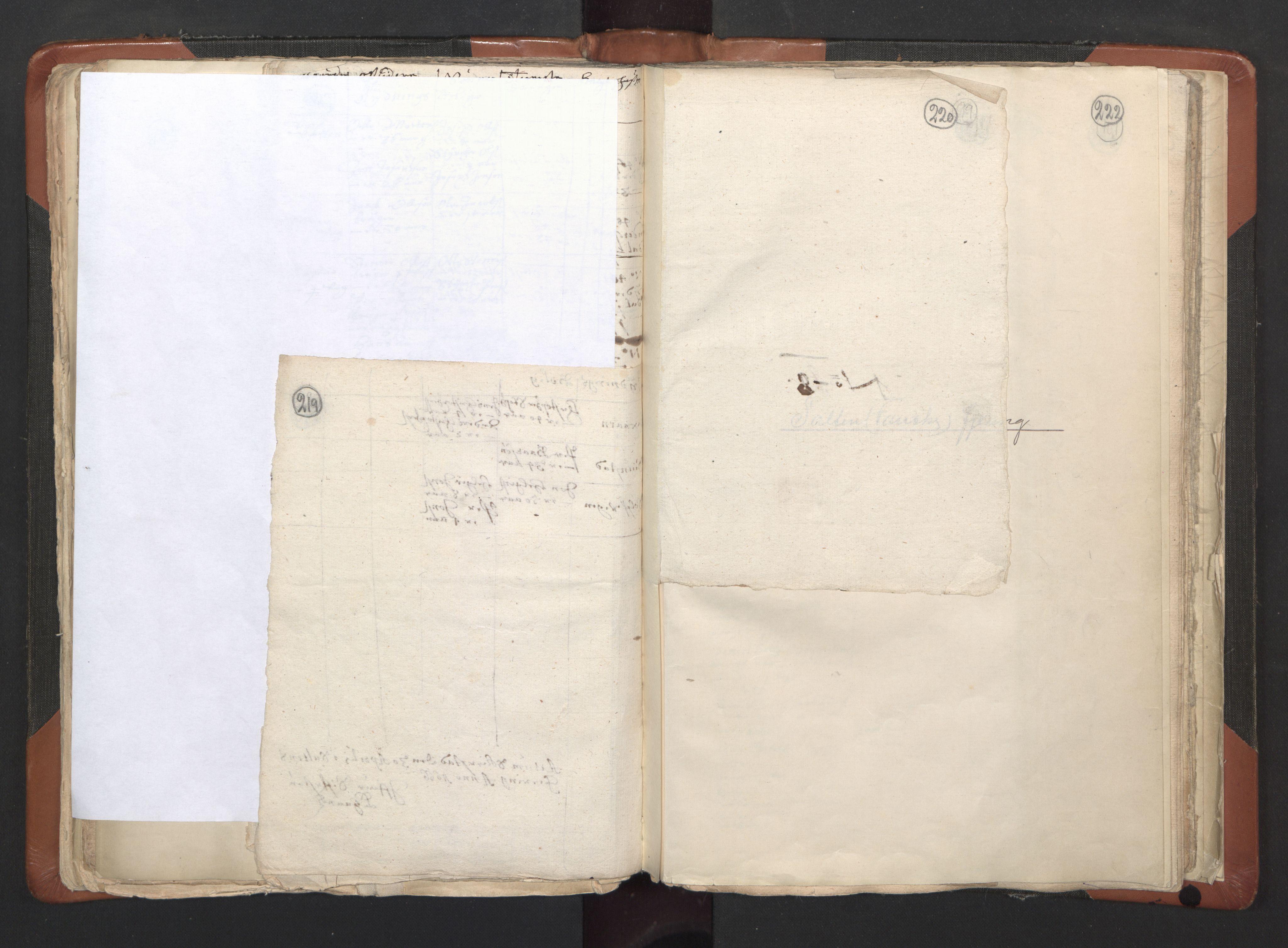 RA, Sogneprestenes manntall 1664-1666, nr. 35: Helgeland prosti og Salten prosti, 1664-1666, s. 219-220