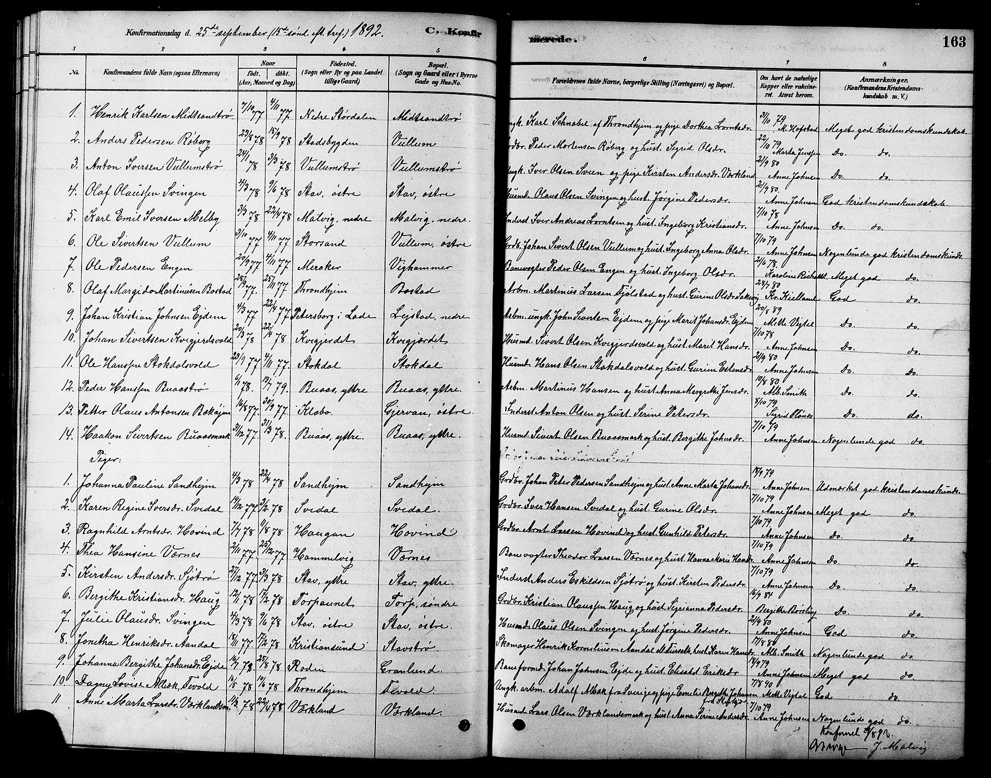 SAT, Ministerialprotokoller, klokkerbøker og fødselsregistre - Sør-Trøndelag, 616/L0423: Klokkerbok nr. 616C06, 1878-1903, s. 163