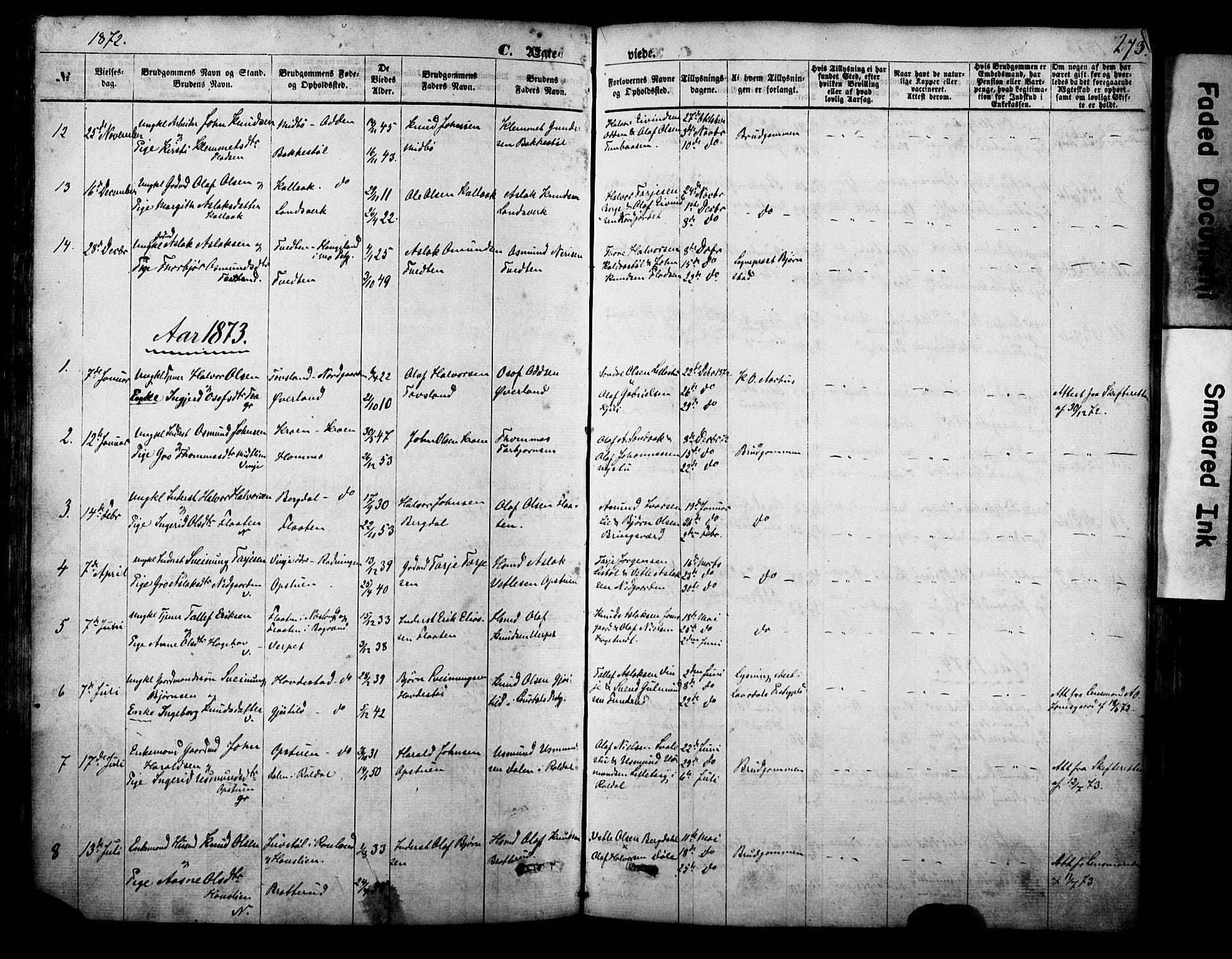 SAKO, Vinje kirkebøker, F/Fa/L0005: Ministerialbok nr. I 5, 1870-1886, s. 273