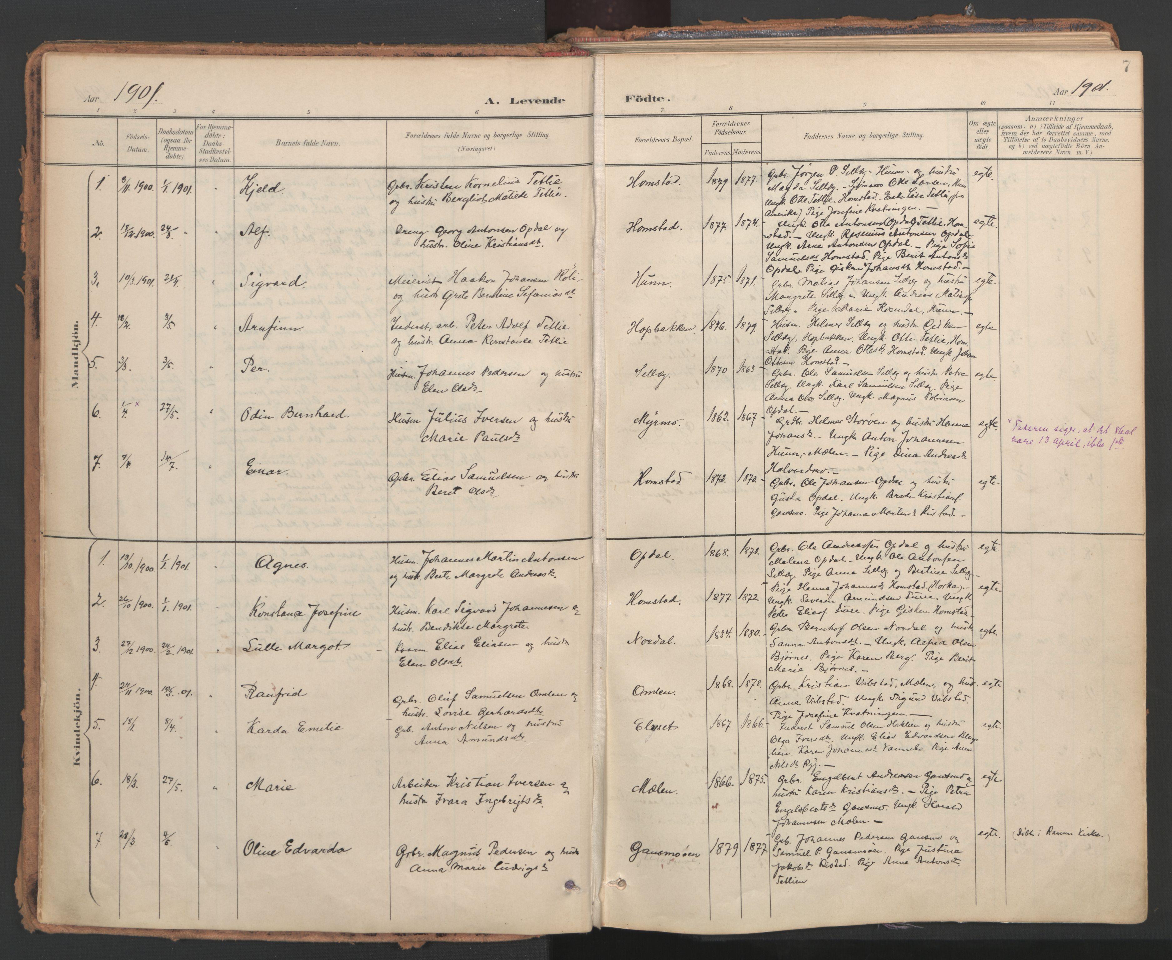SAT, Ministerialprotokoller, klokkerbøker og fødselsregistre - Nord-Trøndelag, 766/L0564: Ministerialbok nr. 767A02, 1900-1932, s. 7