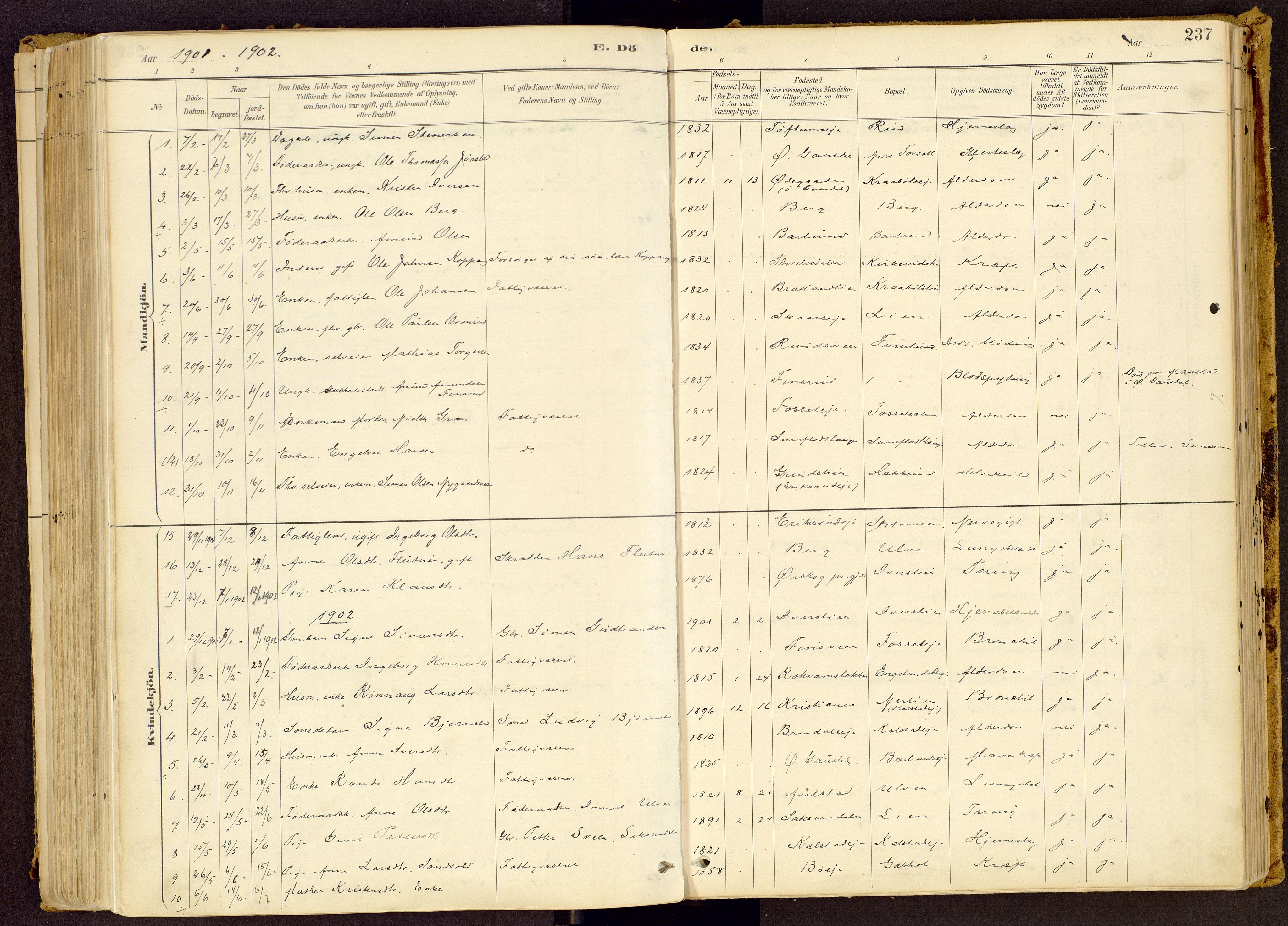 SAH, Vestre Gausdal prestekontor, Ministerialbok nr. 1, 1887-1914, s. 237