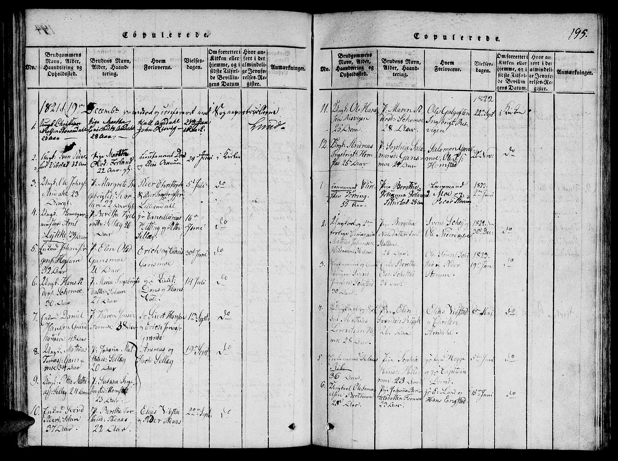 SAT, Ministerialprotokoller, klokkerbøker og fødselsregistre - Nord-Trøndelag, 764/L0546: Ministerialbok nr. 764A06 /1, 1816-1823, s. 195