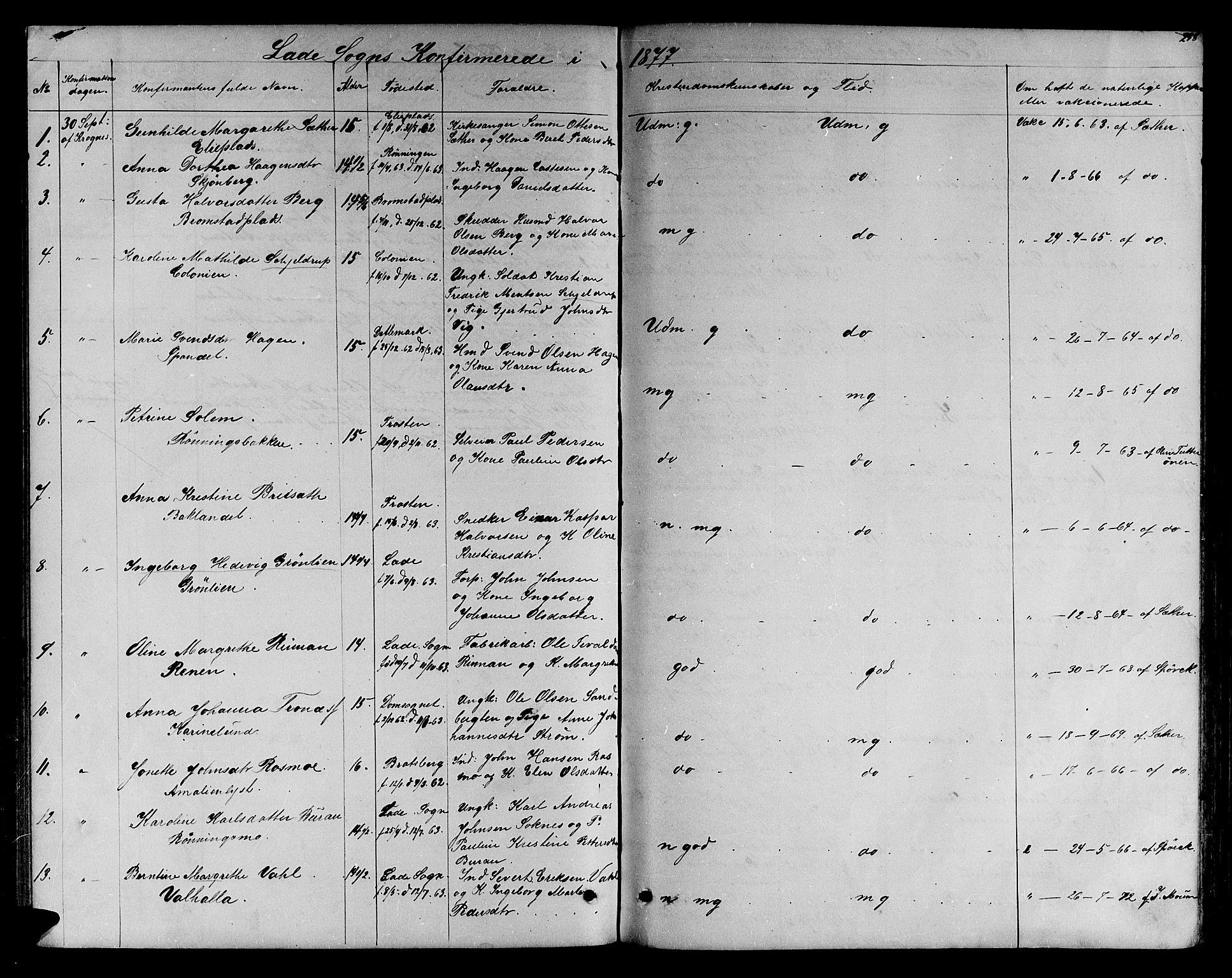 SAT, Ministerialprotokoller, klokkerbøker og fødselsregistre - Sør-Trøndelag, 606/L0311: Klokkerbok nr. 606C07, 1860-1877, s. 258