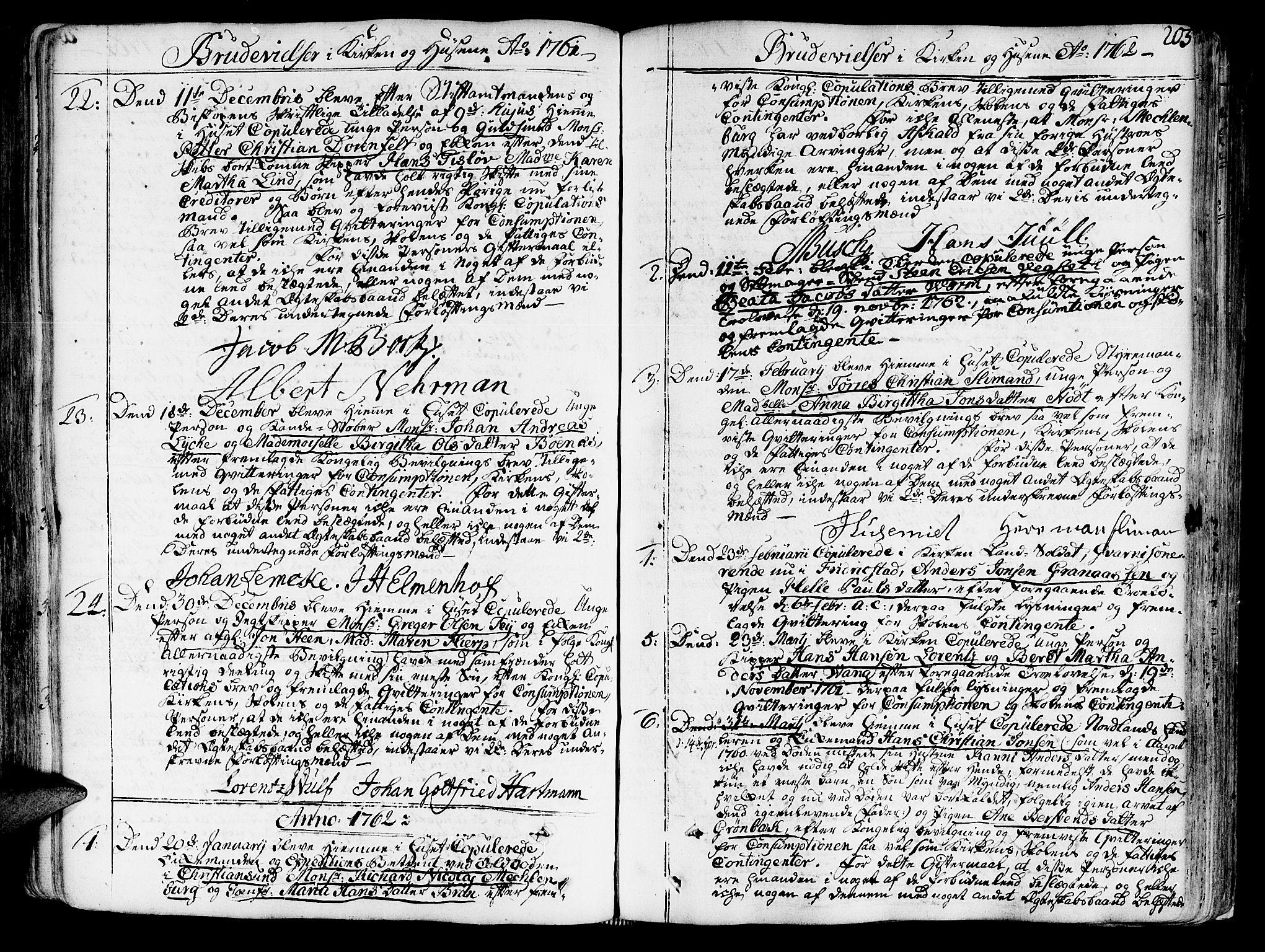 SAT, Ministerialprotokoller, klokkerbøker og fødselsregistre - Sør-Trøndelag, 602/L0103: Ministerialbok nr. 602A01, 1732-1774, s. 205