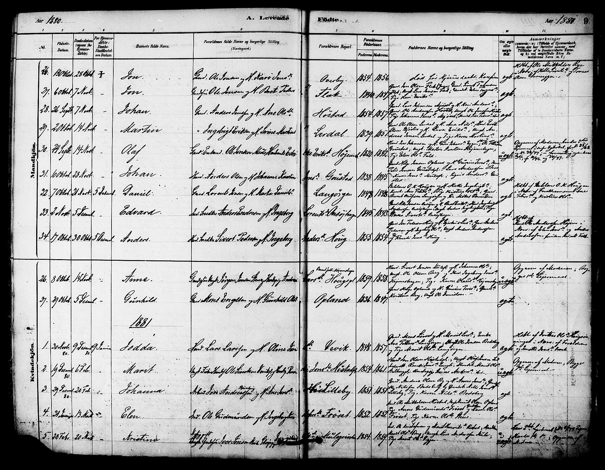SAT, Ministerialprotokoller, klokkerbøker og fødselsregistre - Sør-Trøndelag, 612/L0378: Ministerialbok nr. 612A10, 1878-1897, s. 9