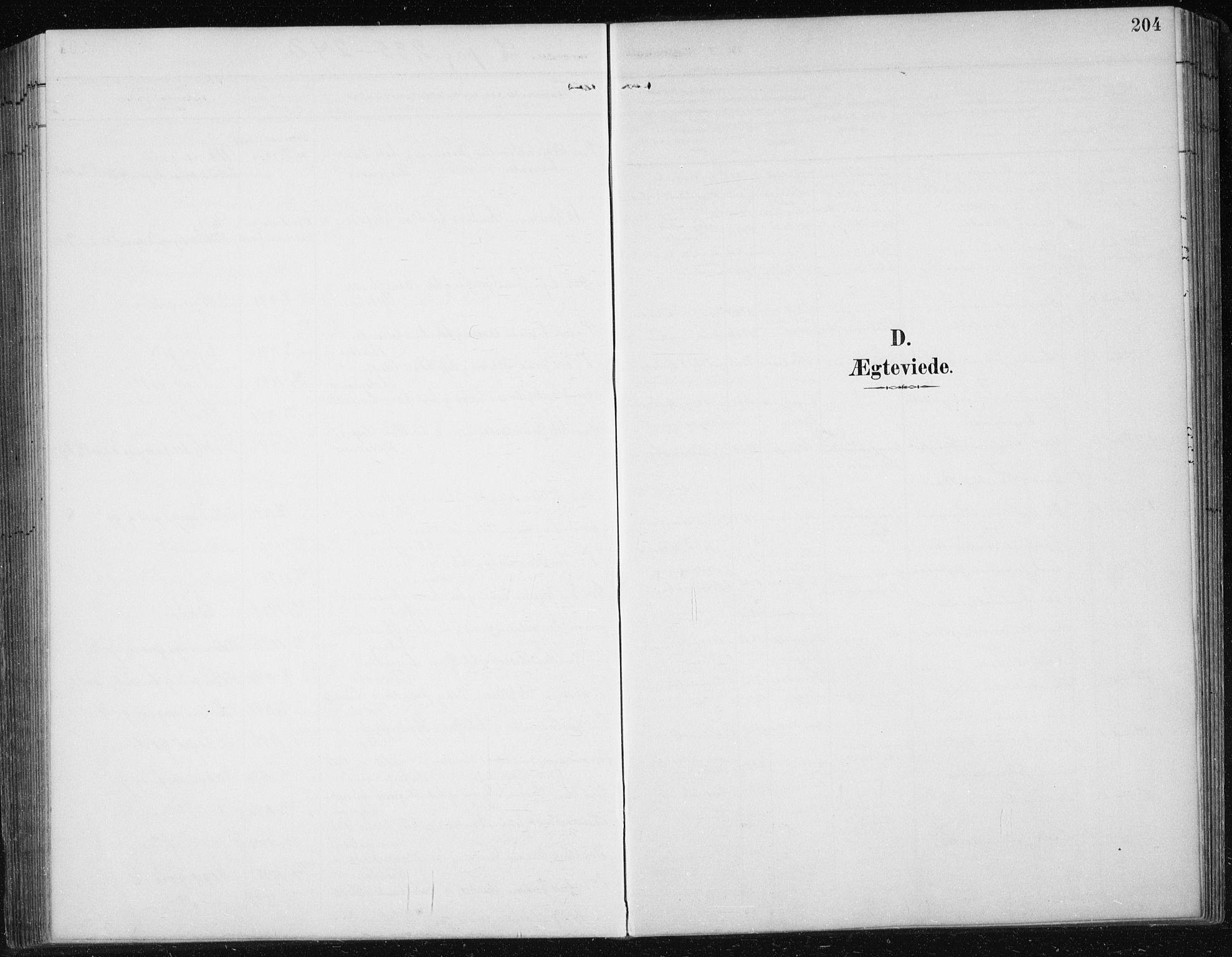 SAT, Ministerialprotokoller, klokkerbøker og fødselsregistre - Sør-Trøndelag, 674/L0876: Klokkerbok nr. 674C03, 1892-1912, s. 204