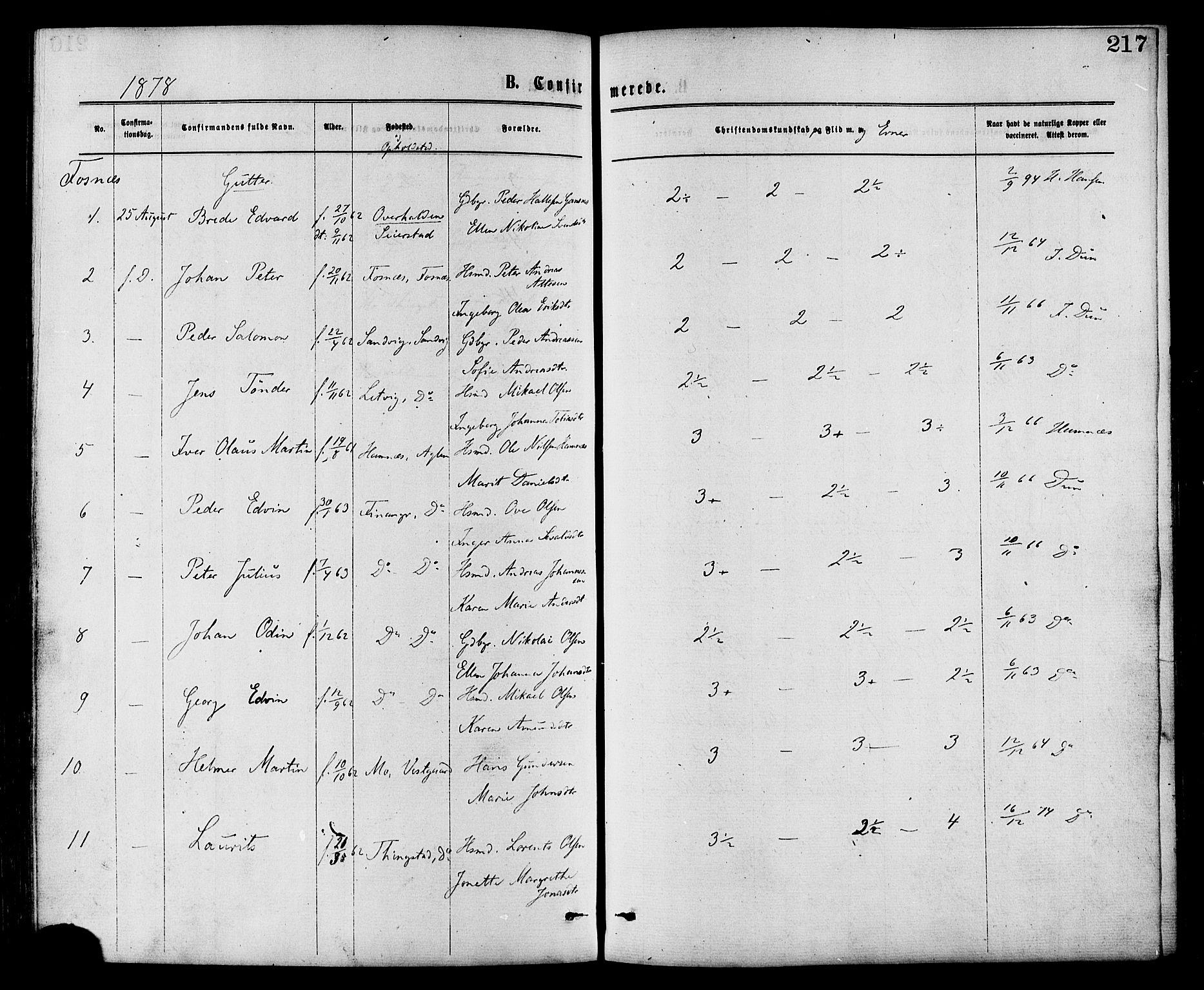 SAT, Ministerialprotokoller, klokkerbøker og fødselsregistre - Nord-Trøndelag, 773/L0616: Ministerialbok nr. 773A07, 1870-1887, s. 217