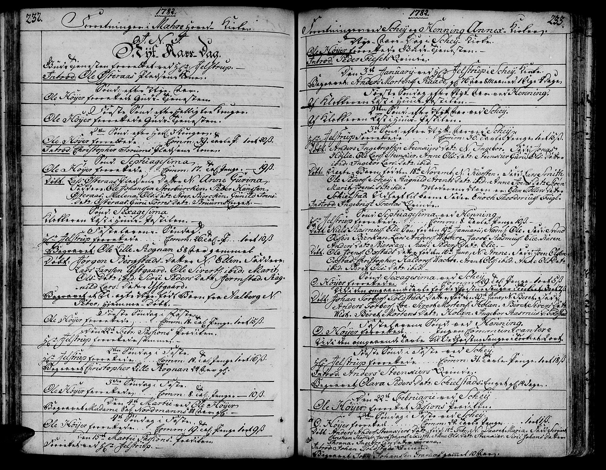 SAT, Ministerialprotokoller, klokkerbøker og fødselsregistre - Nord-Trøndelag, 735/L0331: Ministerialbok nr. 735A02, 1762-1794, s. 232-233