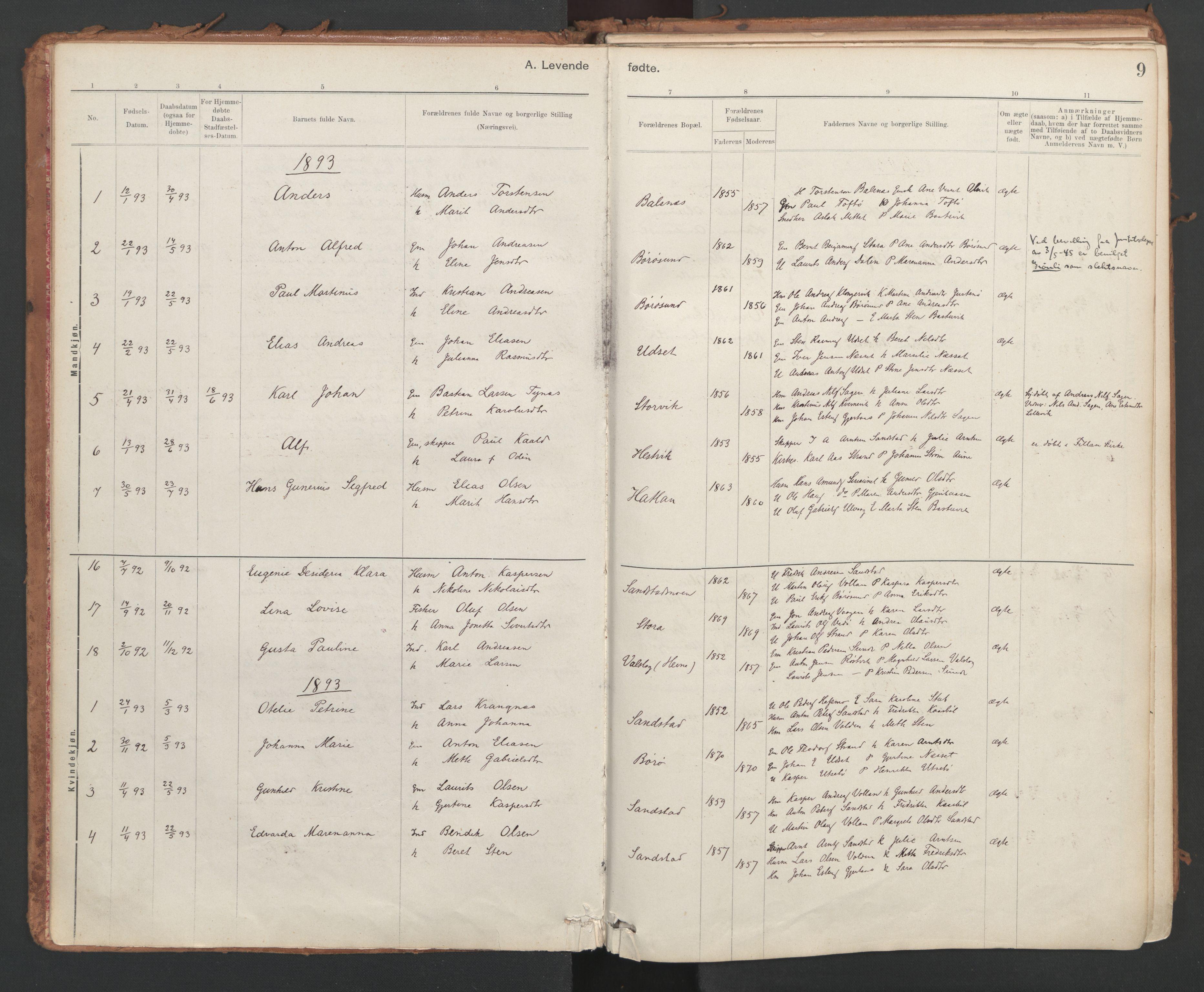 SAT, Ministerialprotokoller, klokkerbøker og fødselsregistre - Sør-Trøndelag, 639/L0572: Ministerialbok nr. 639A01, 1890-1920, s. 9