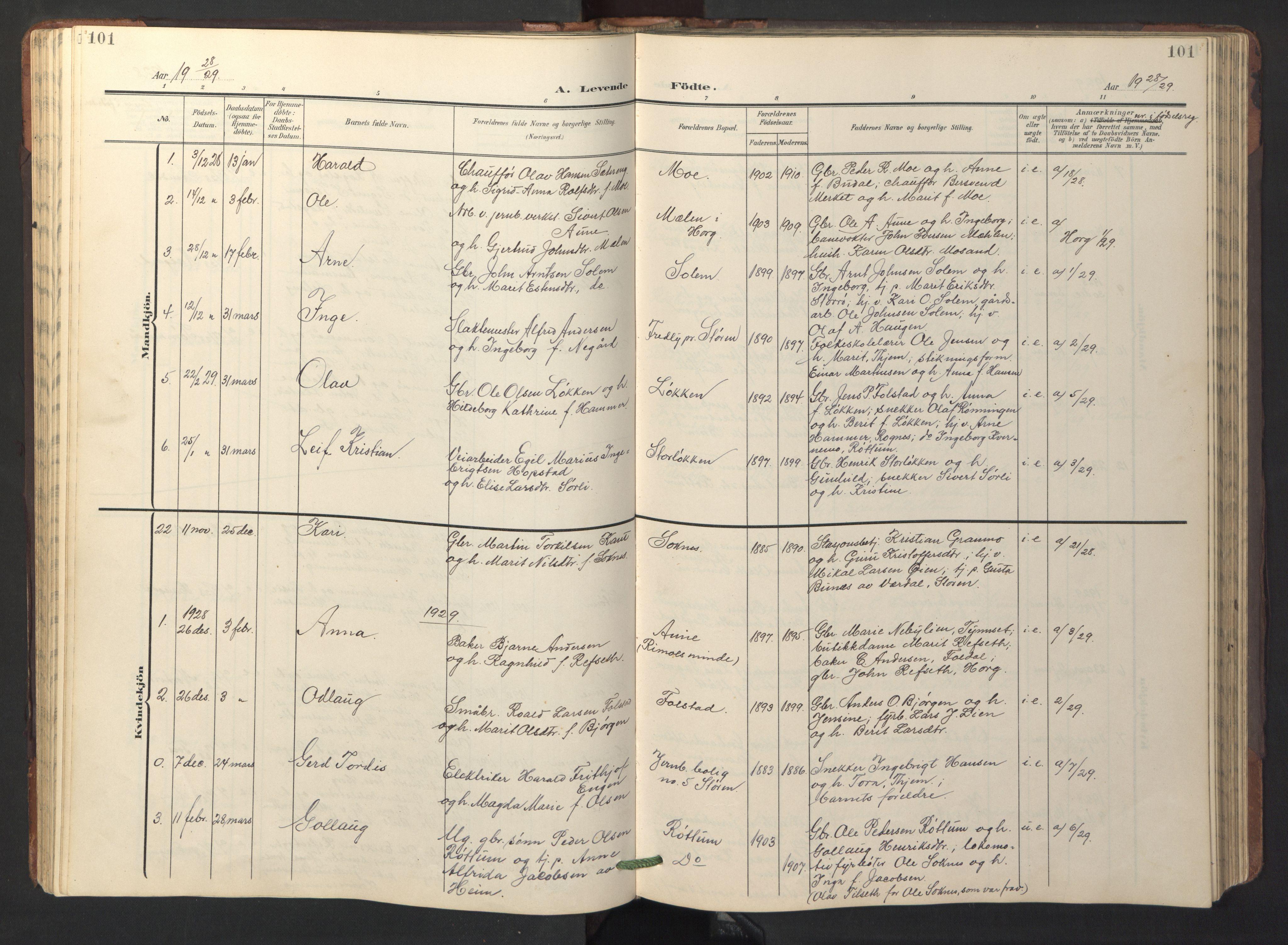 SAT, Ministerialprotokoller, klokkerbøker og fødselsregistre - Sør-Trøndelag, 687/L1019: Klokkerbok nr. 687C03, 1904-1931, s. 101