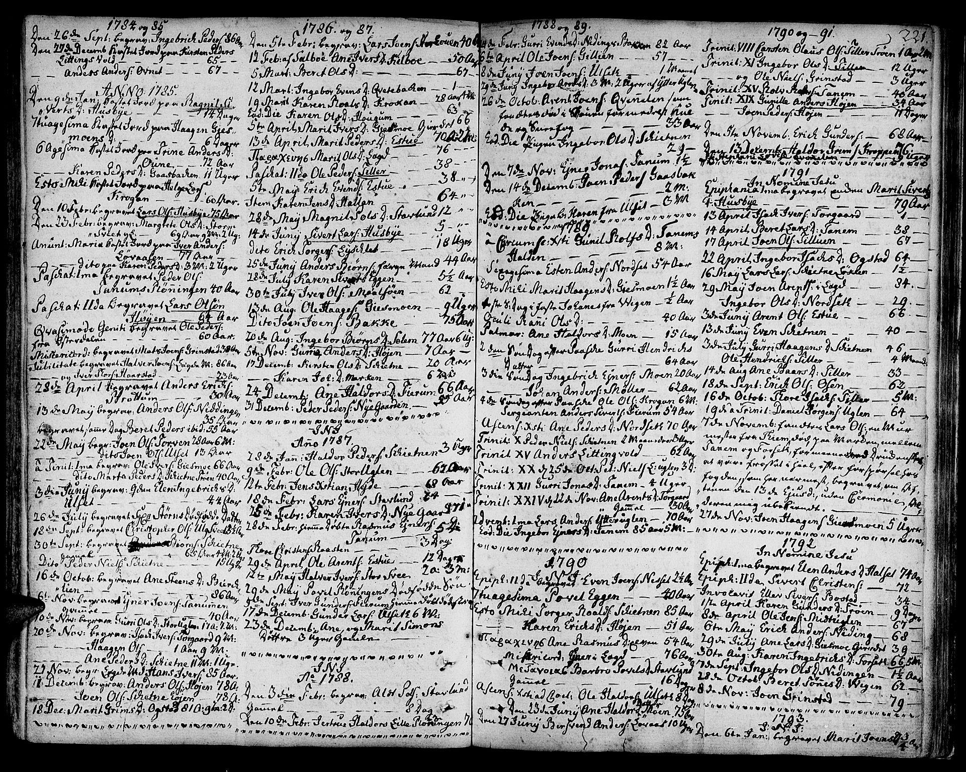SAT, Ministerialprotokoller, klokkerbøker og fødselsregistre - Sør-Trøndelag, 618/L0438: Ministerialbok nr. 618A03, 1783-1815, s. 221
