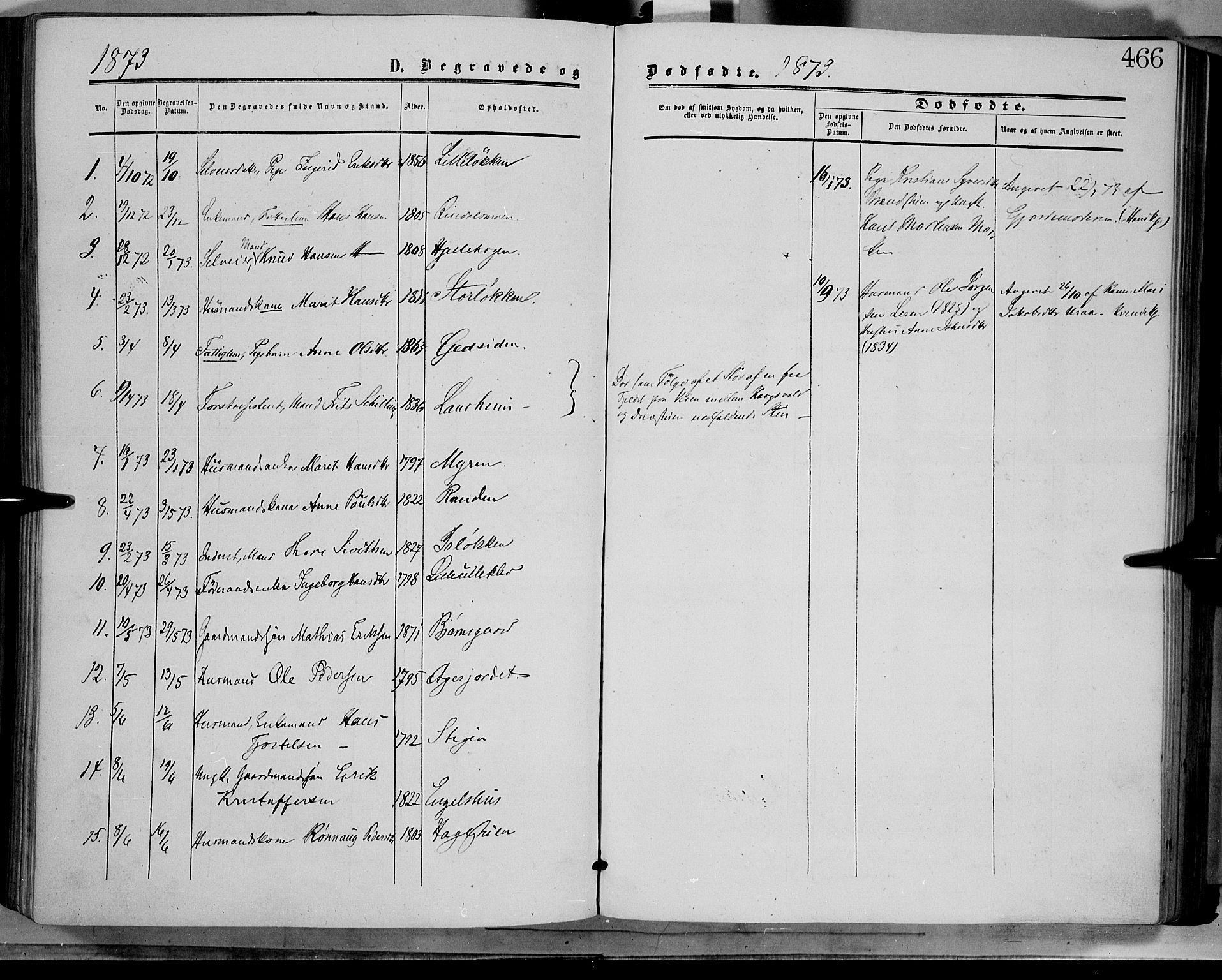 SAH, Dovre prestekontor, Ministerialbok nr. 1, 1854-1878, s. 466