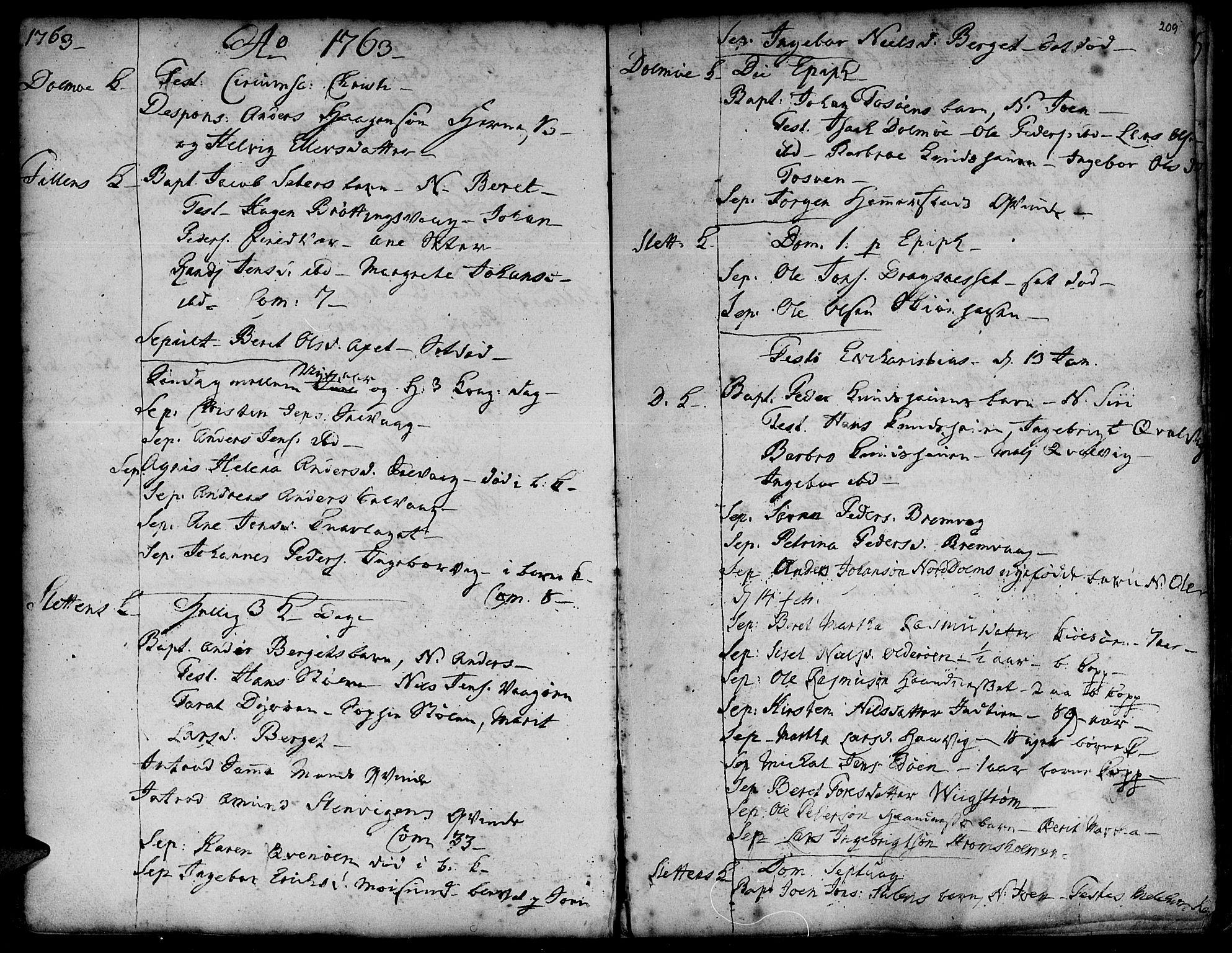 SAT, Ministerialprotokoller, klokkerbøker og fødselsregistre - Sør-Trøndelag, 634/L0525: Ministerialbok nr. 634A01, 1736-1775, s. 209