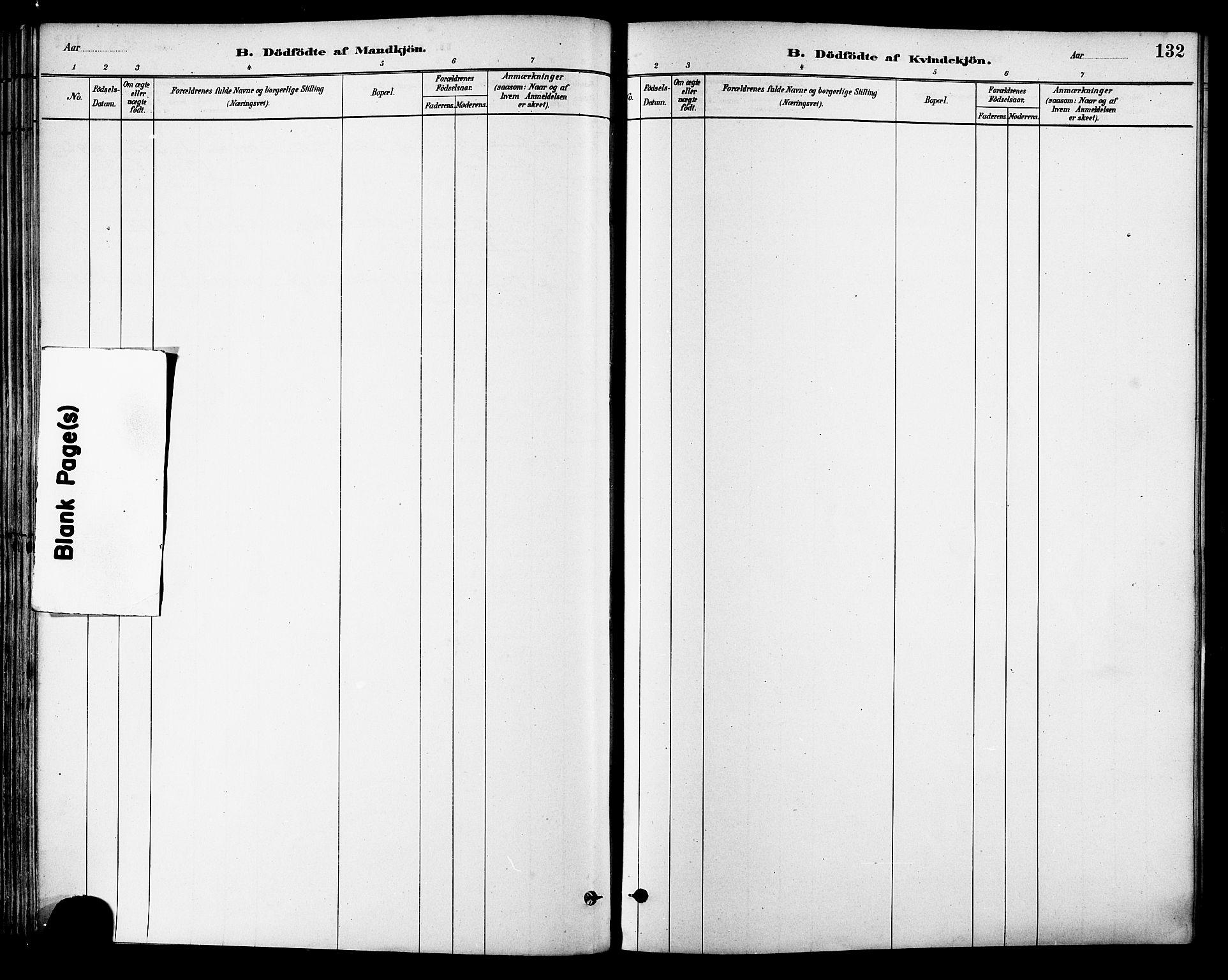 SAT, Ministerialprotokoller, klokkerbøker og fødselsregistre - Sør-Trøndelag, 630/L0496: Ministerialbok nr. 630A09, 1879-1895, s. 132