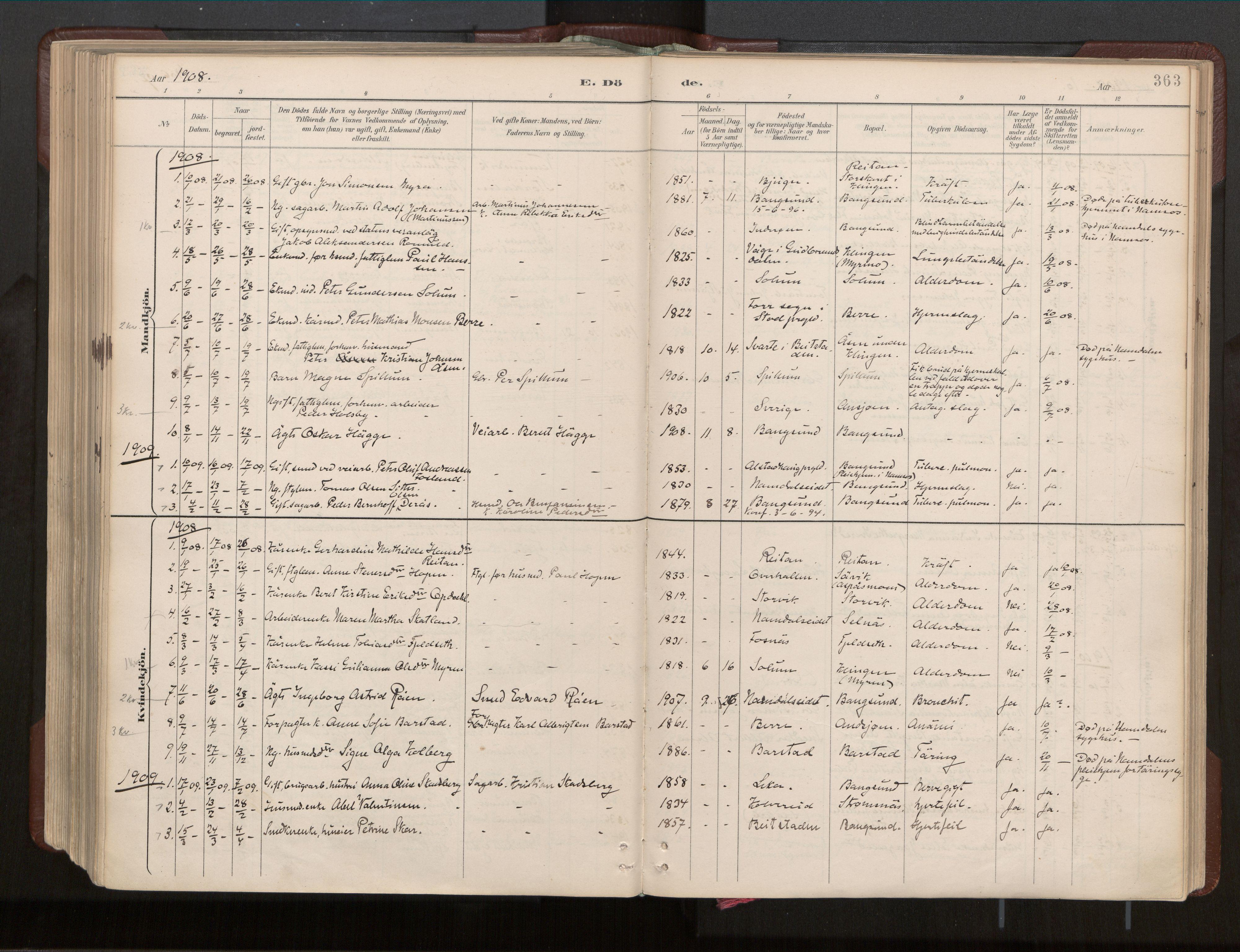 SAT, Ministerialprotokoller, klokkerbøker og fødselsregistre - Nord-Trøndelag, 770/L0589: Ministerialbok nr. 770A03, 1887-1929, s. 363