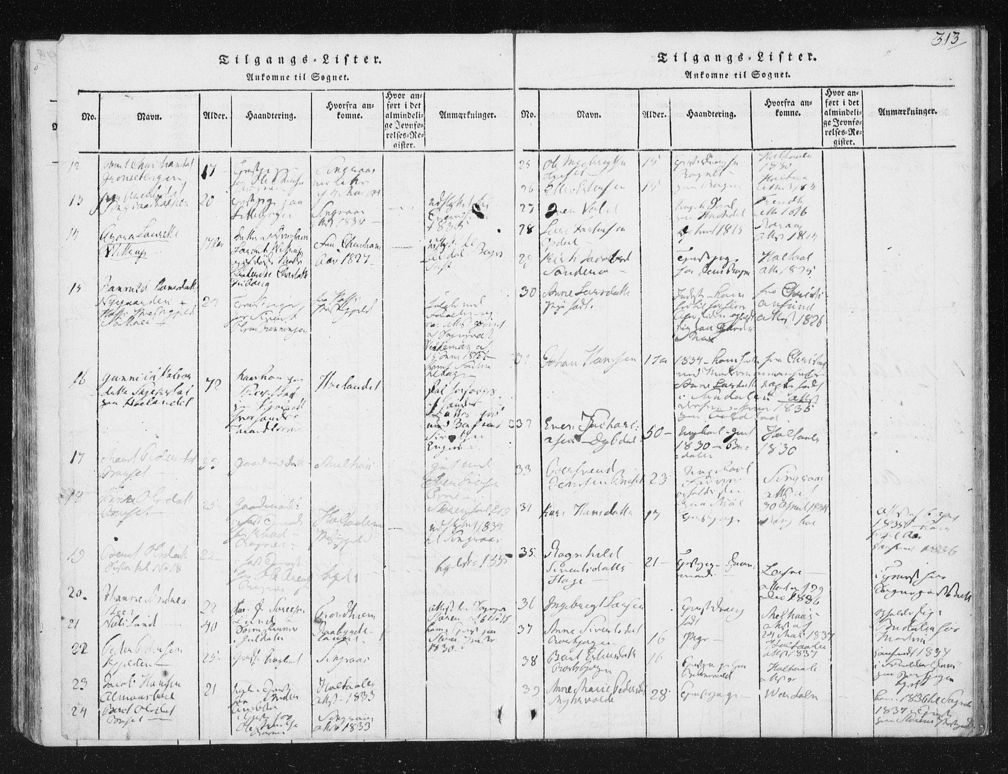 SAT, Ministerialprotokoller, klokkerbøker og fødselsregistre - Sør-Trøndelag, 687/L0996: Ministerialbok nr. 687A04, 1816-1842, s. 313