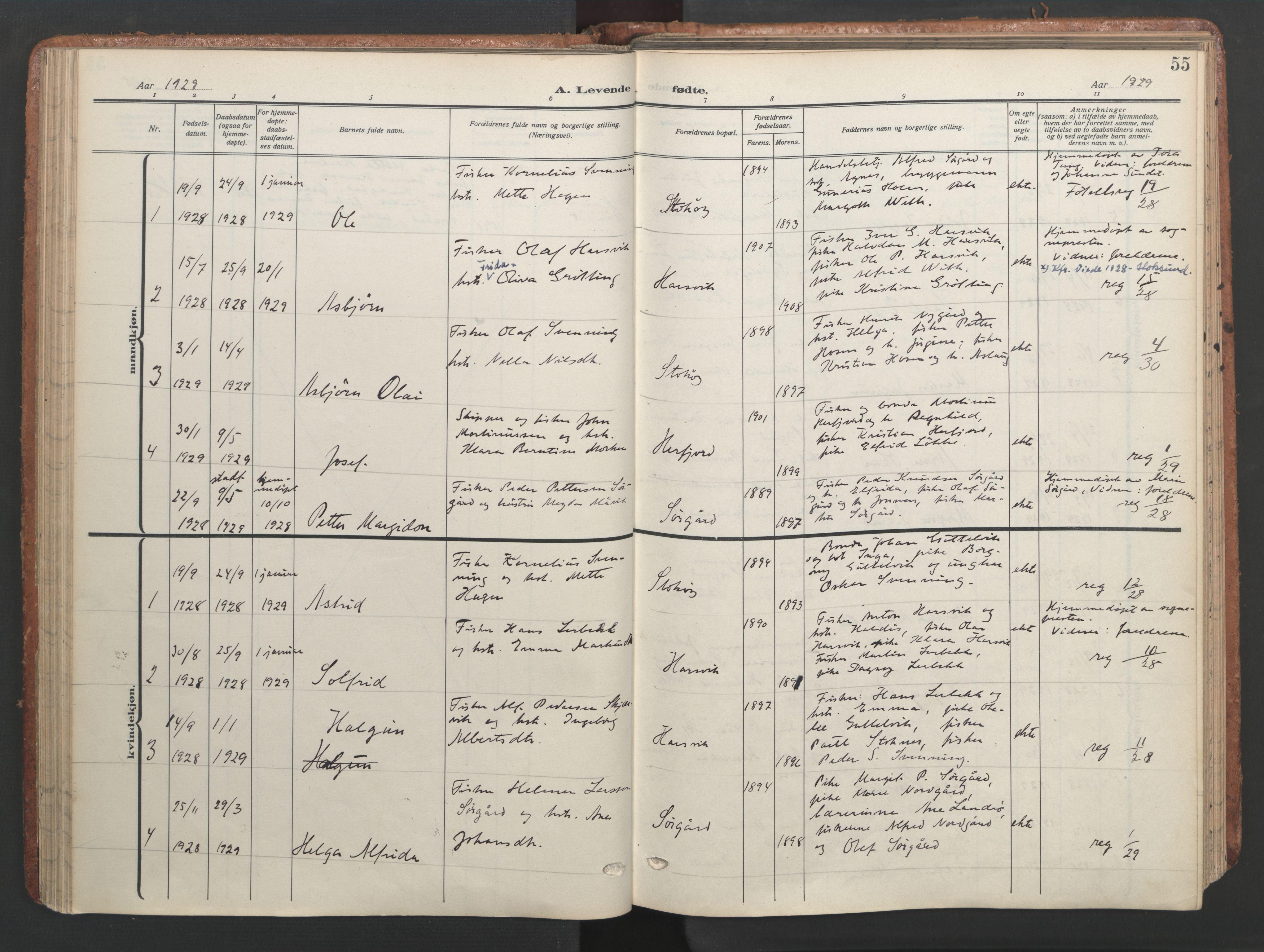 SAT, Ministerialprotokoller, klokkerbøker og fødselsregistre - Sør-Trøndelag, 656/L0694: Ministerialbok nr. 656A03, 1914-1931, s. 55