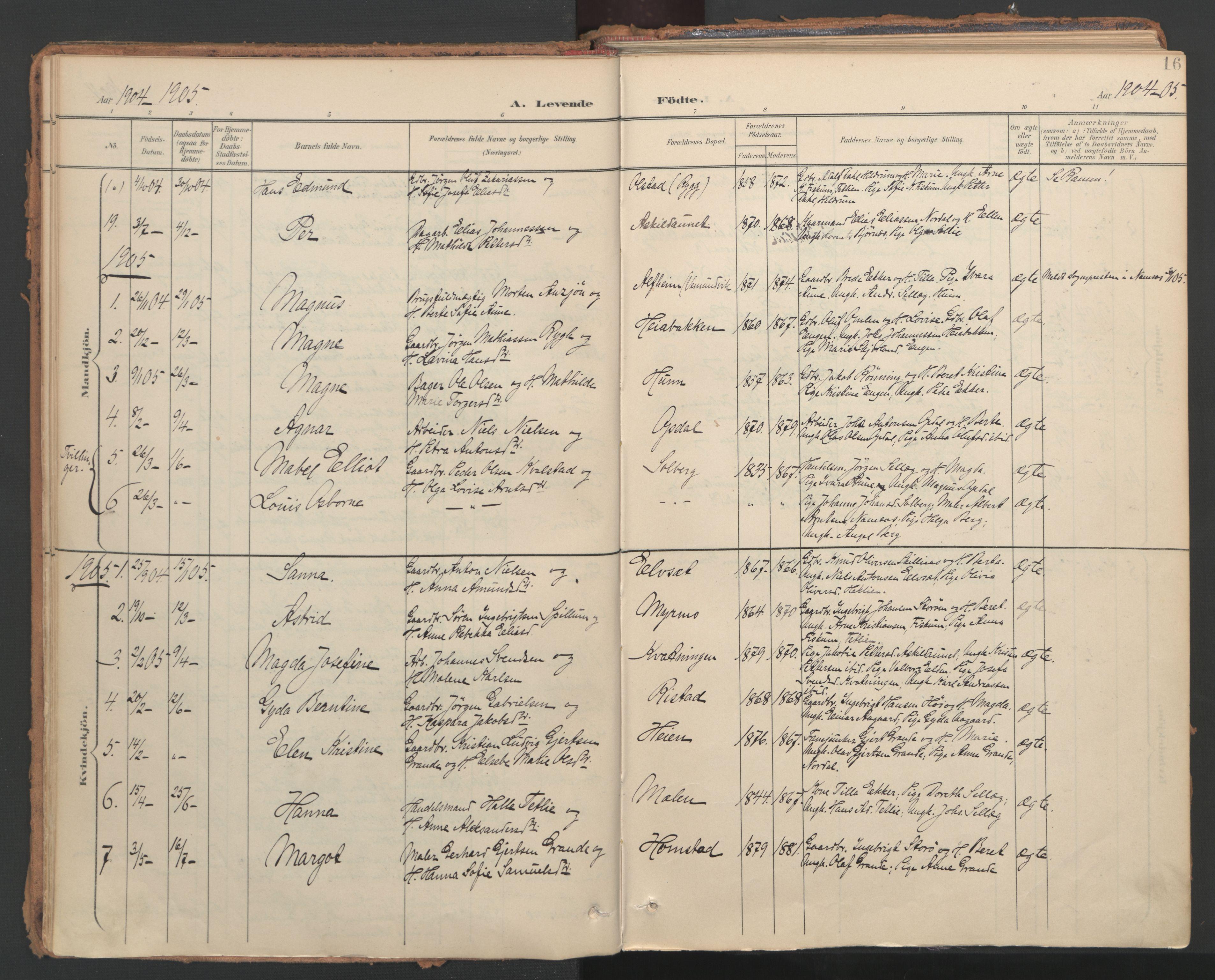 SAT, Ministerialprotokoller, klokkerbøker og fødselsregistre - Nord-Trøndelag, 766/L0564: Ministerialbok nr. 767A02, 1900-1932, s. 16