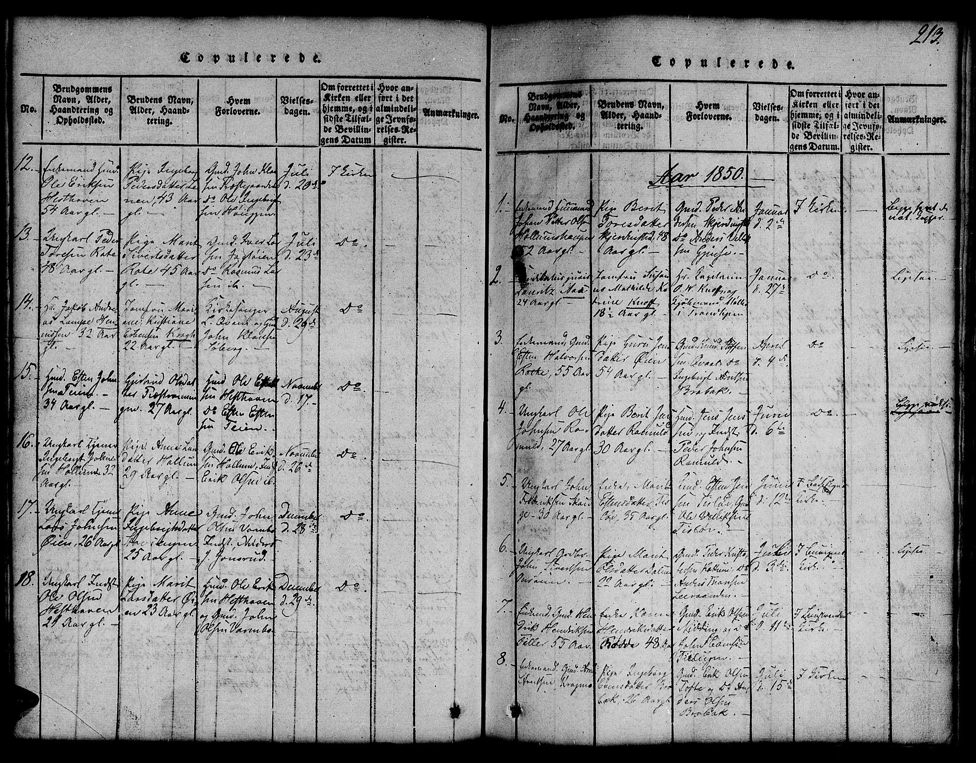 SAT, Ministerialprotokoller, klokkerbøker og fødselsregistre - Sør-Trøndelag, 691/L1092: Klokkerbok nr. 691C03, 1816-1852, s. 213