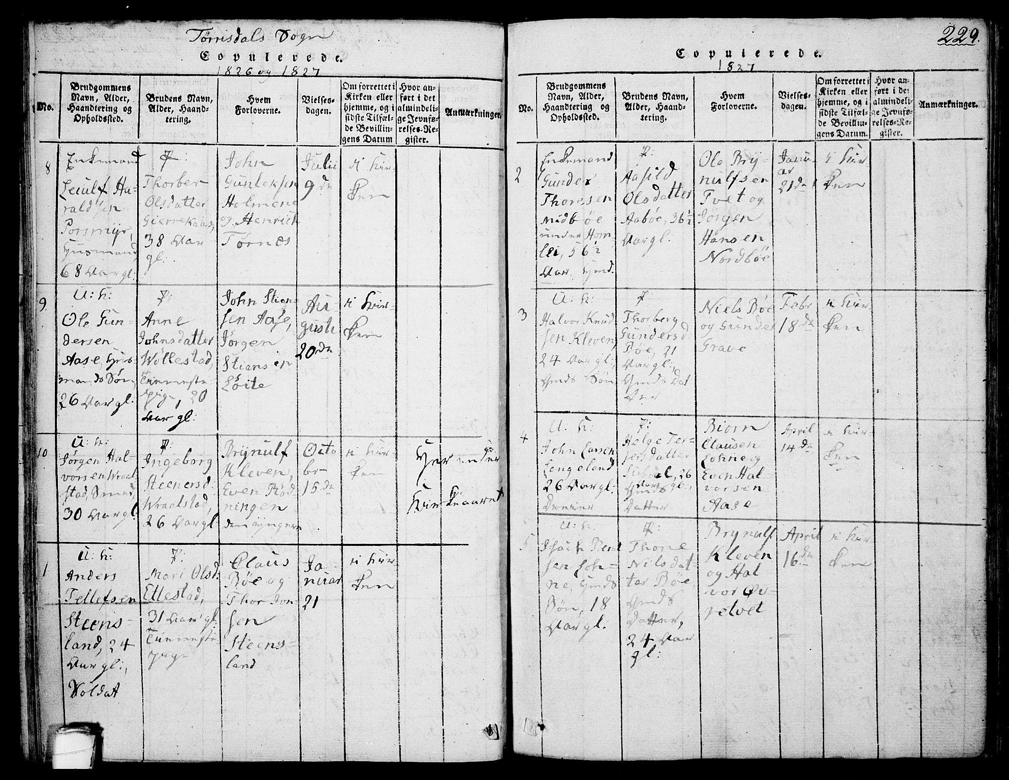 SAKO, Drangedal kirkebøker, F/Fa/L0005: Ministerialbok nr. 5 /2, 1814-1831, s. 229