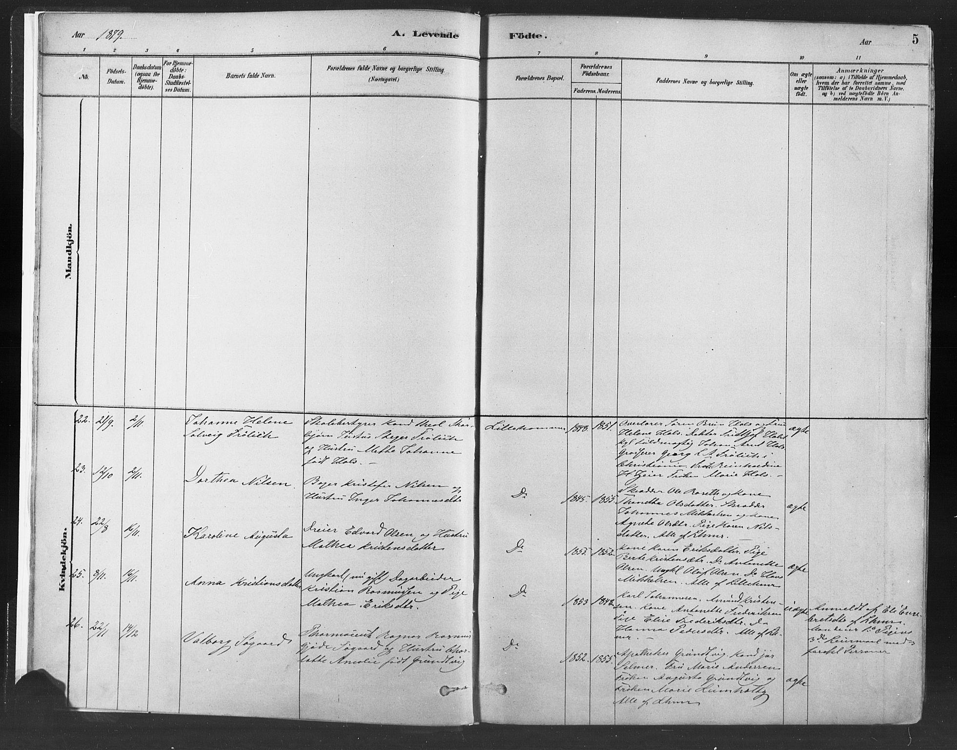 SAH, Fåberg prestekontor, H/Ha/Haa/L0010: Ministerialbok nr. 10, 1879-1900, s. 5
