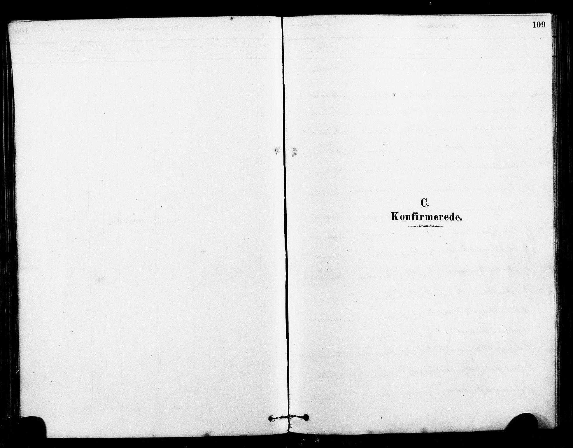 SAT, Ministerialprotokoller, klokkerbøker og fødselsregistre - Sør-Trøndelag, 640/L0578: Ministerialbok nr. 640A03, 1879-1889, s. 109